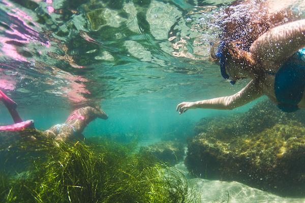 lagunabeach_snorkel_071515_0132.jpg