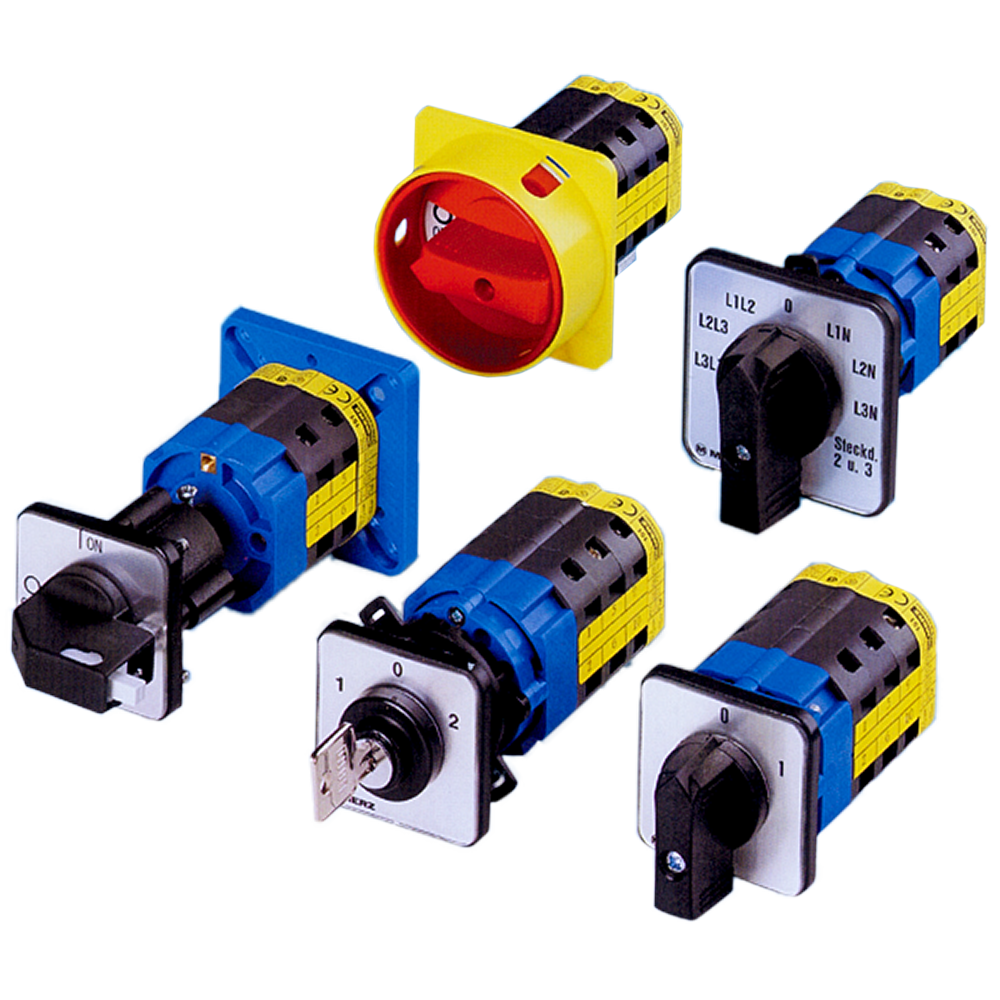 Cam Switches    Download PDF Catalog