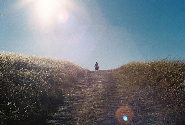I already miss that Summertime shine :/ . . . . . . . . . . . . . . . . . . . . . . #35mm #pentaxk1000 #summer #california #filmphotography #kodak #filmisnotdead #analogphotography