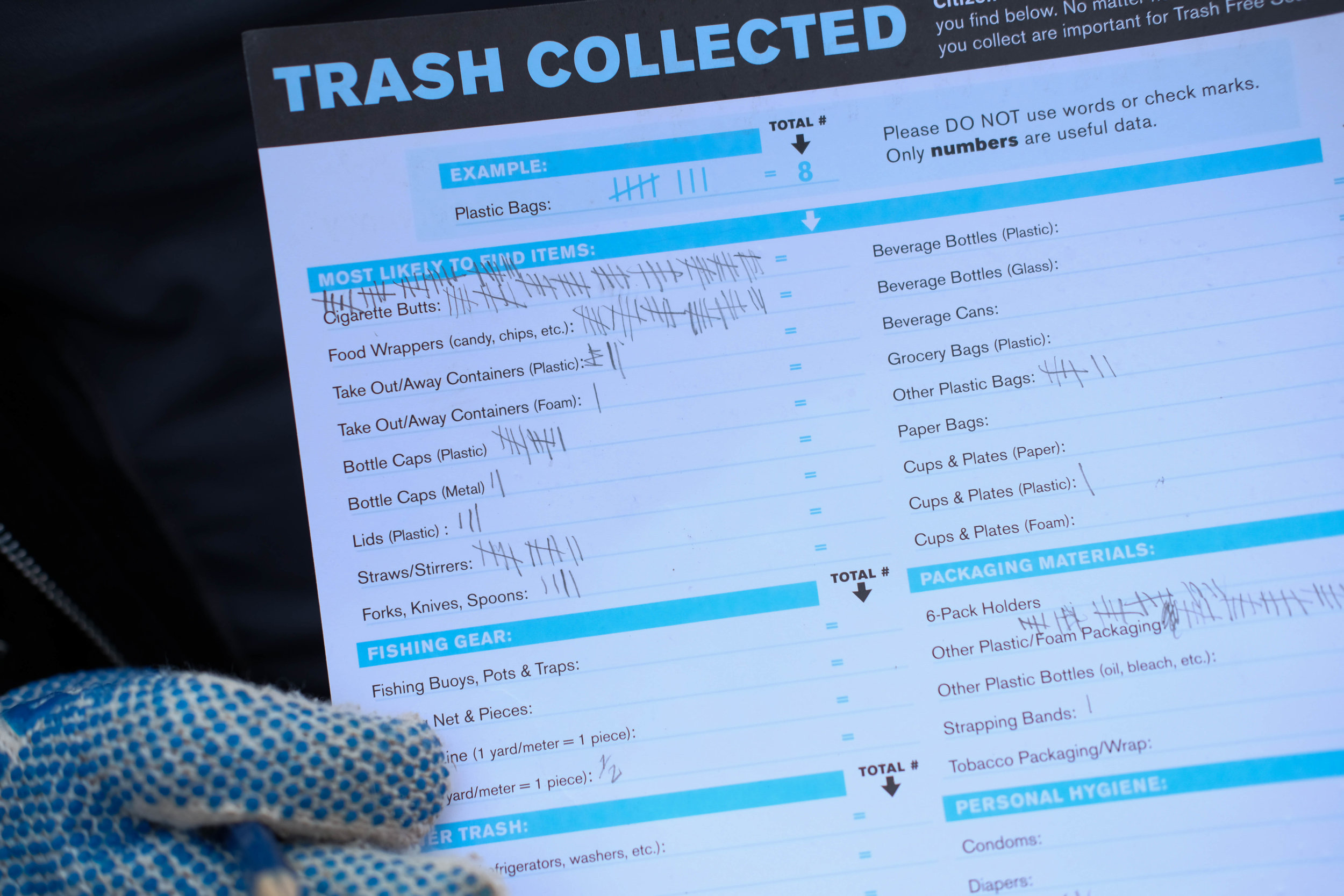 Maria Volkova shows the amoutn of trash collected on her Heal the Bay worksheet in Santa Monica, CALIF on September 15th, 2017. (Jayrol San Jose)