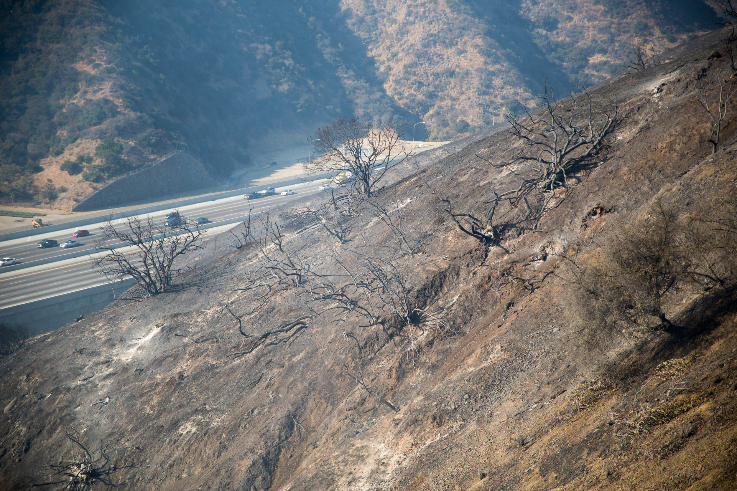 The 405 freeway is opened after the Skirball Fire burns through the hillside of Bel-Air near Getty View Park on Wednesday, December 6, 2017 in Los Angeles, California. (Jose Lopez)