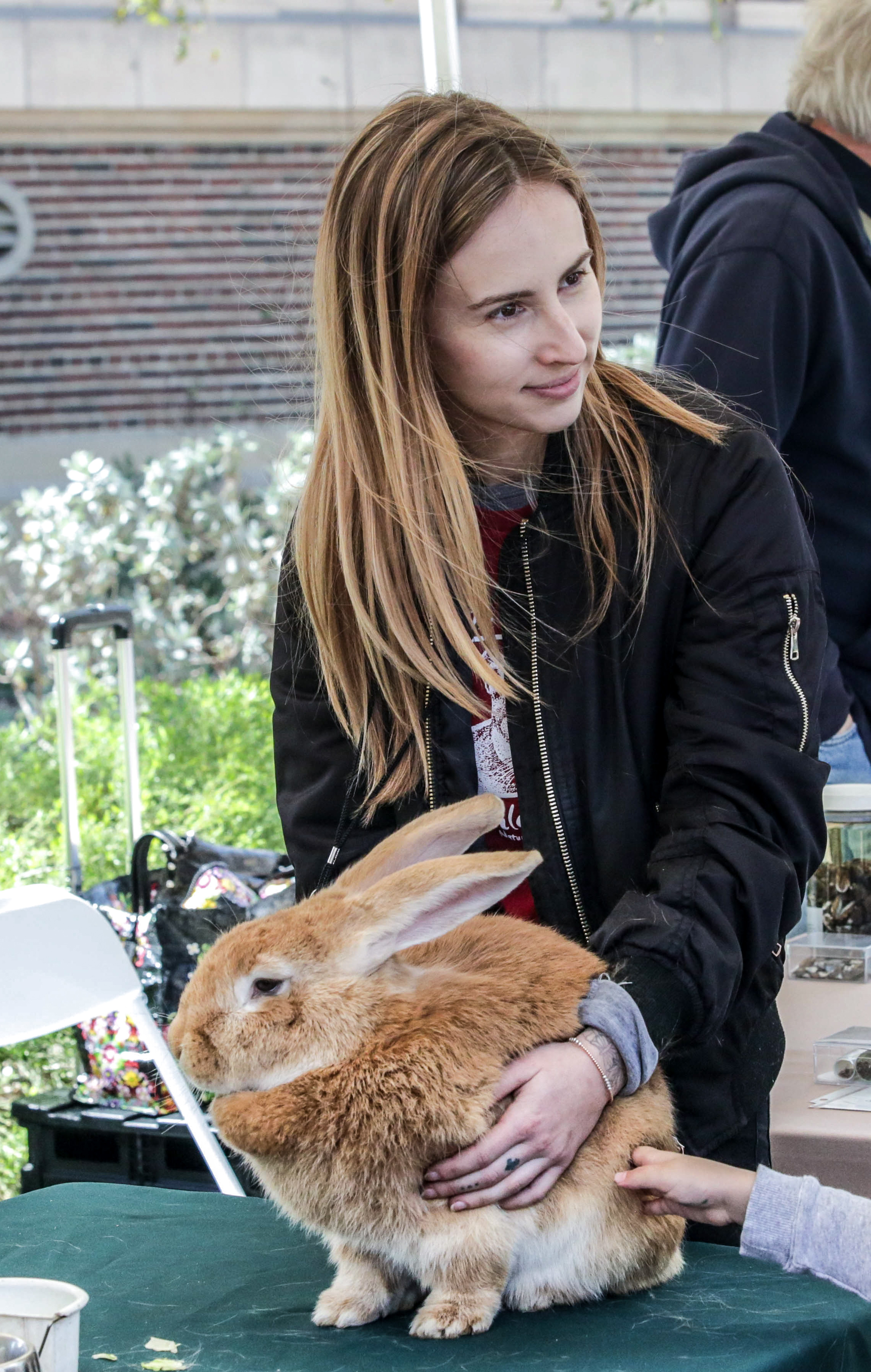 Alexis Kahn keeps hold of a Flemish Rabbit as lots of little hands reached out to pet the soft fur. The rabbit and other animals were on display at the Los Angeles Nature Fest at the Natural History Museum on the University of Southern California campus, Los Angeles, California. Events took place on Satureday, March 17, 2018. (Corsair Photo/WilliamWendelman)