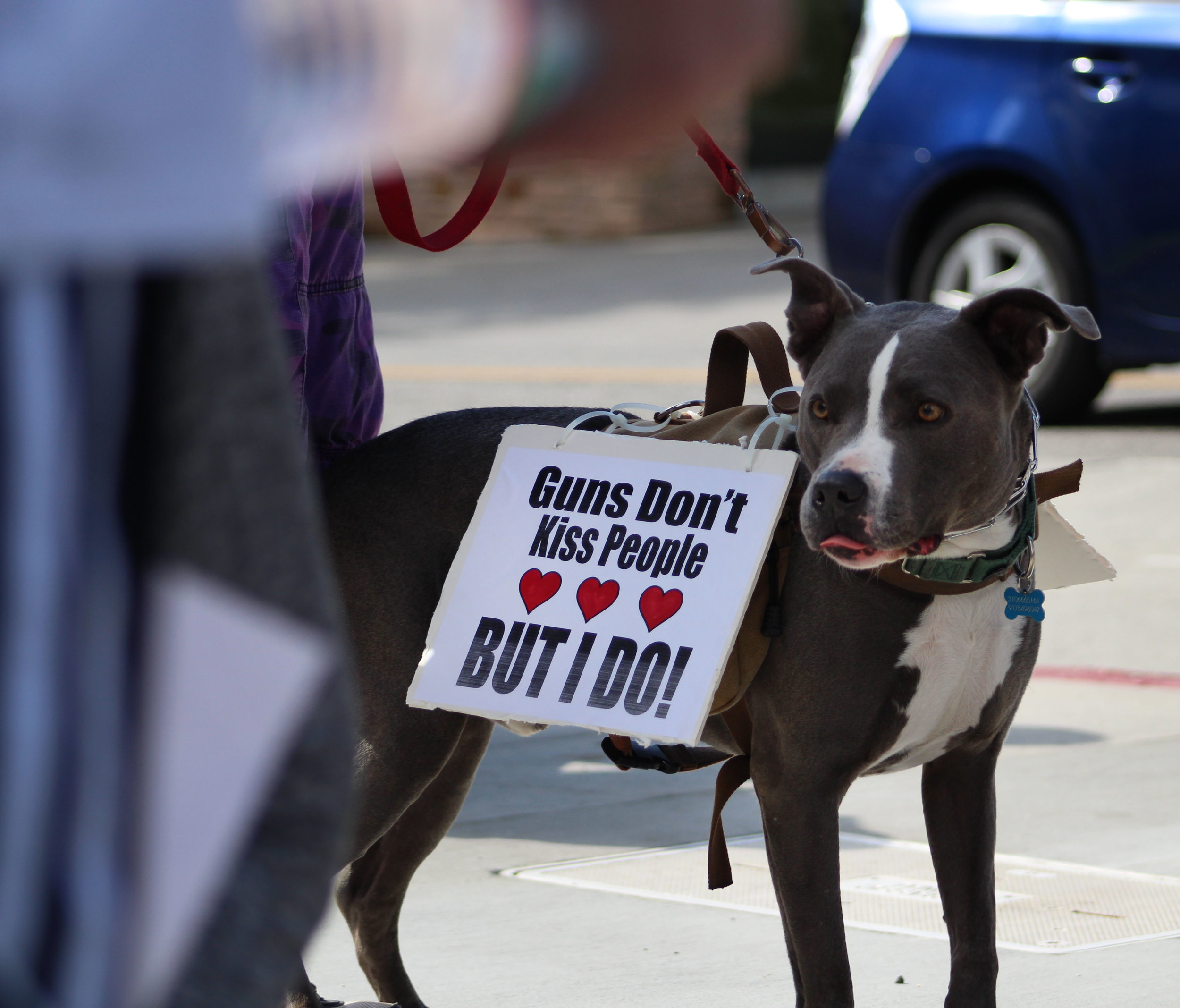 Santa Monica residents and dog gather to protest gun violence on Montana Avenue in Santa Monica, California. On Saturday, March 24, 2018. (Pyper Witt/Corsair Photo)