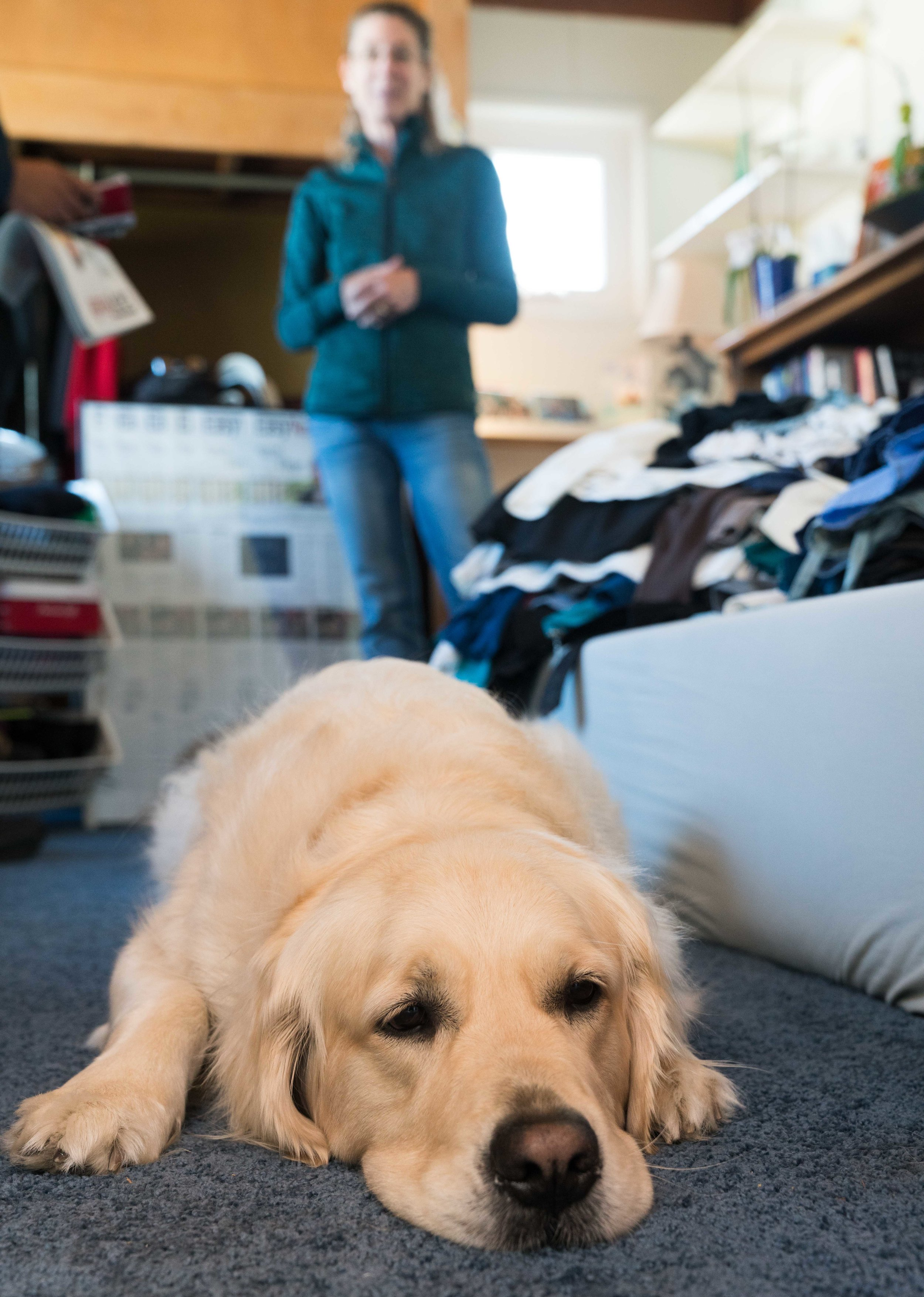 Sam, the family dog, lies on the floor of David Sliff's old room as Kathy Welch, Sliff's mother, stands in the background in Hermosa Beach, California on Saturday, March 17, 2018. Sliff, an SMC student, took his life on December 30, 2017. (Helena Sung/Corsair Photo)