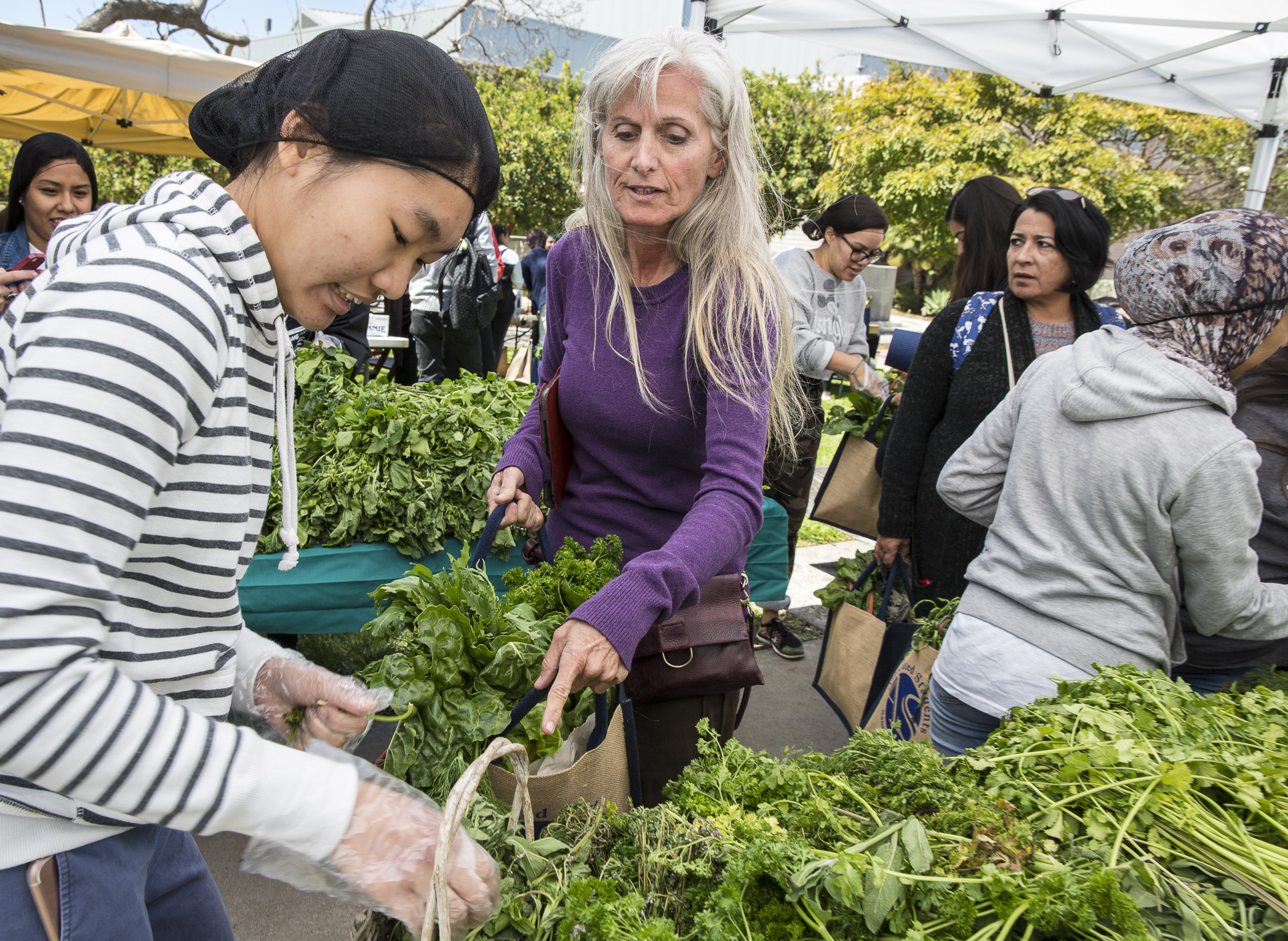"Santa Monica College (SMC) student Laura Jayne Blackwell (center) stops and points to the fresh cilantro that she would love to add to her basket of fresh produce during the Santa Monica College Earth Day event ""Students Feeding Students"" from the Corsair Farmers Market at the Organic Learning Garden on the SMC main campus in Santa Monica California, on Monday April 16 2018. ""Students Feeding Students"" was the first event of a week of festivities that would take place during the SMC 2018 Earth Week, and the week would continues with environmentally conscious film screenings, environmental education workshops and a sustainability fair where non-profit organizations and green businesses would offer internships to students who are passionate about food health and the environment.  (Matthew Martin: Corsair Photo)"