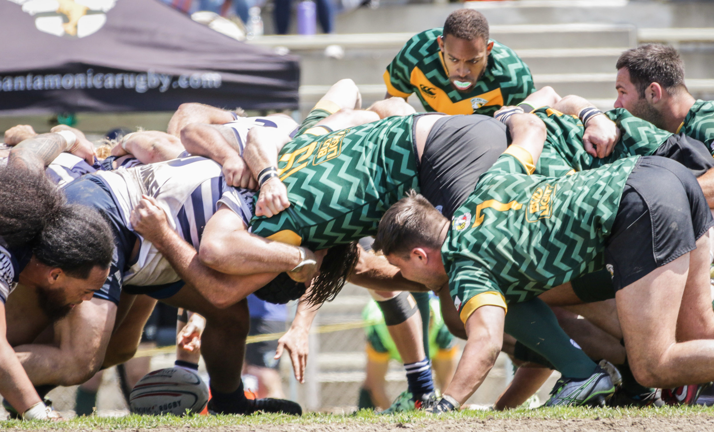 Santa Monica Rugby player closely follows the ball during a scrum with Old Mission Beach Athletic Club during their game held at Westchester High School on Saturday, April 28th, 2018. The game ended 26-7 in favor for OMBAC. (Westchester, California, Saturday, April 28, 2018.) (Ashutosh Bikram Singh/Corsair Photo)