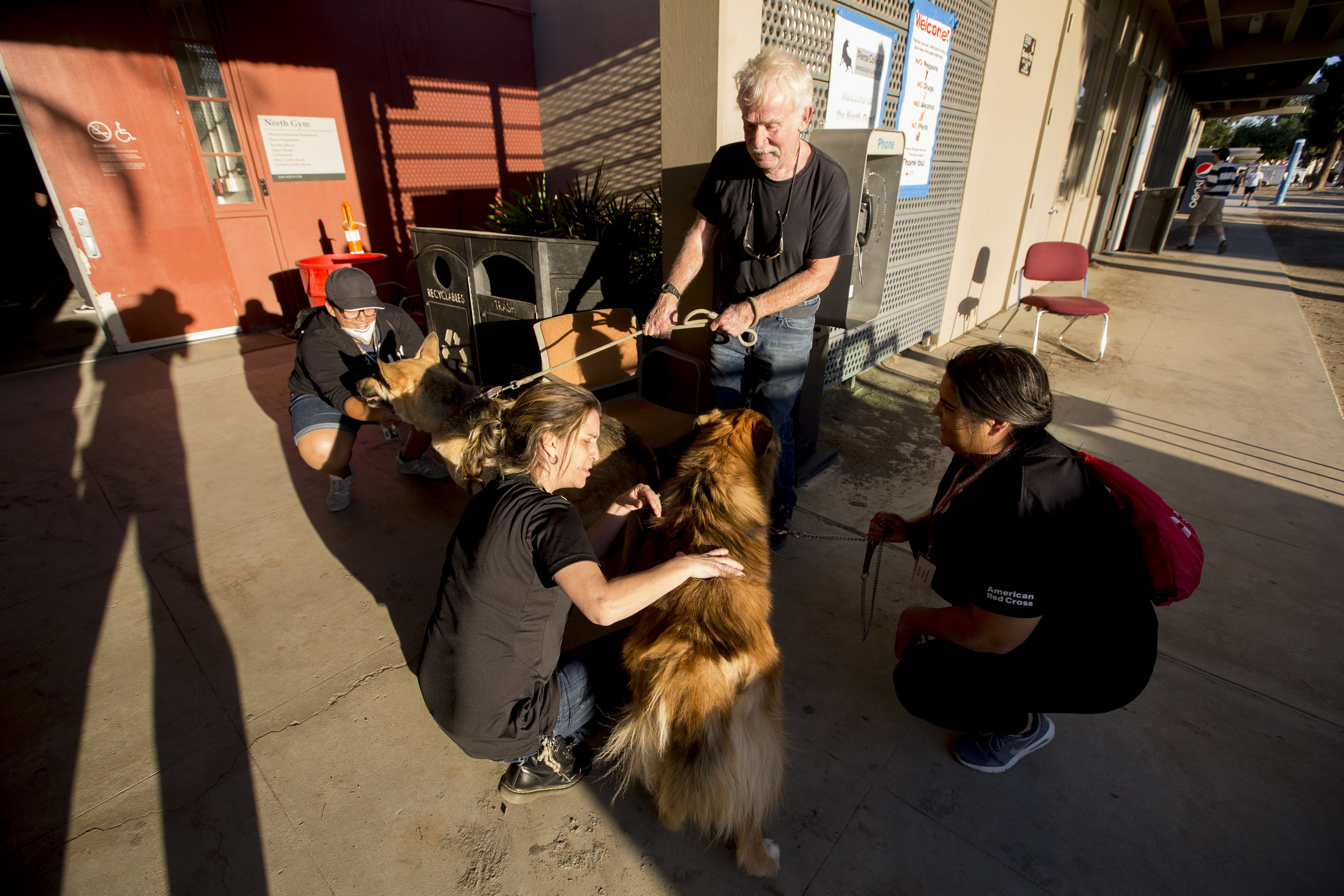 An evacuee arrives with his pets at the Woolsey fire evacuation center set up at Los Angeles Pierce College on November 9, 2018 in Woodland Hills, Calif. (Jose Lopez)