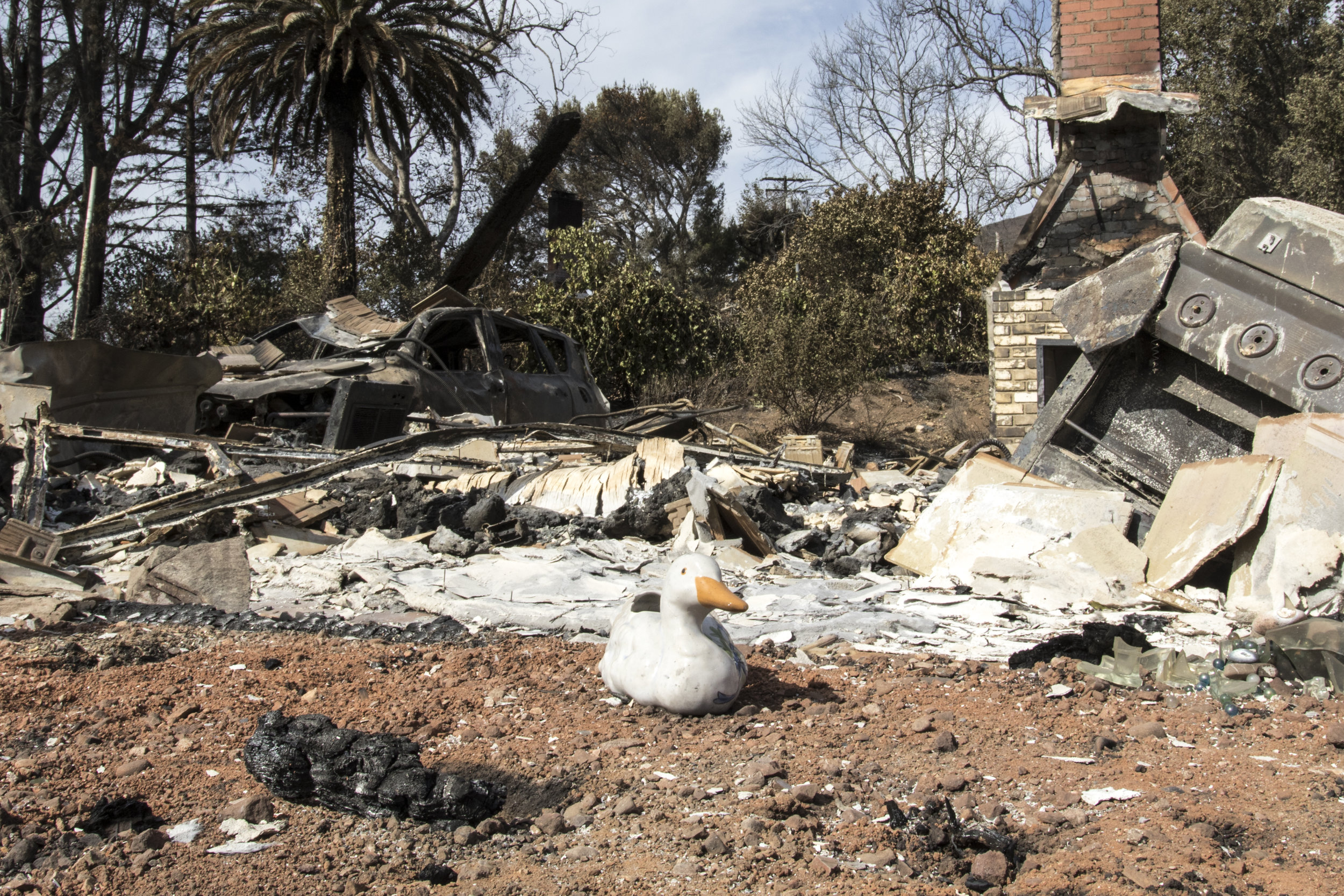 The remnants of a house burned to the ground by the Woolsey Fire in Malibu, California on November 13, 2018 (Zane Meyer-Thornton/Corsair Photo)
