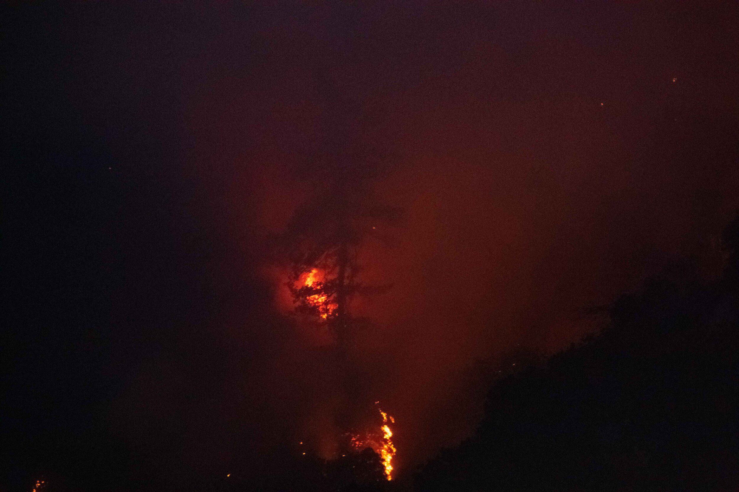 A tree dimly illuminated by a portion of the Saddlerige fire just off interstate 5 near Newhall Calif. on Friday, Oct. 11 2019. (Conner Savage/The Corsair)