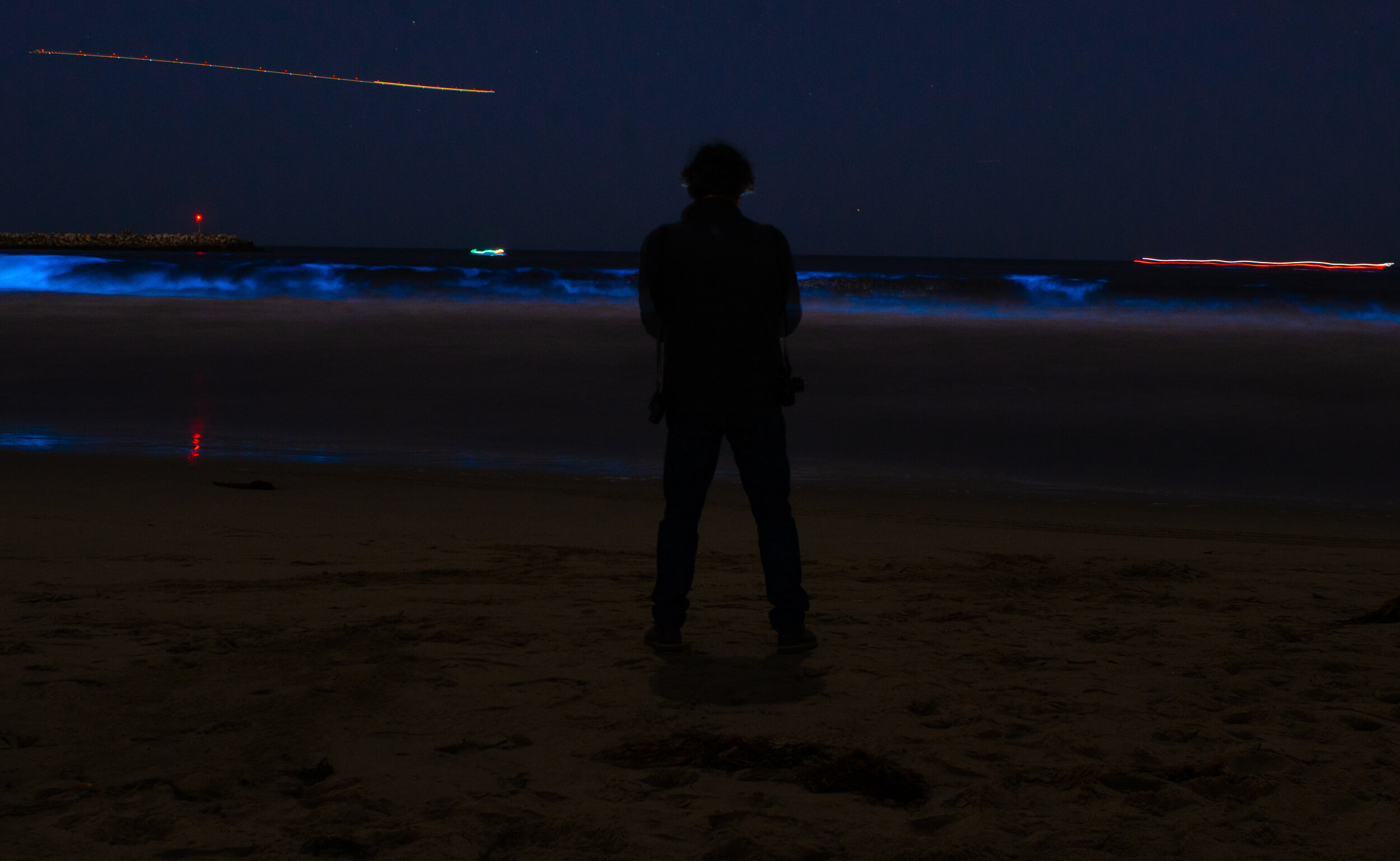 The Last Wave Of Bioluminescence The Corsair