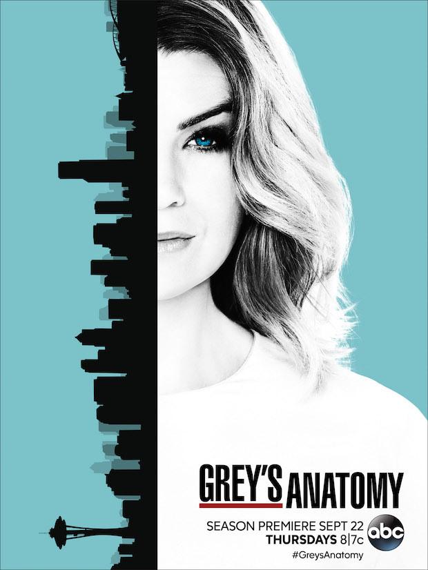 source: http://tvline.com/2016/08/02/greys-anatomy-season-13-poster-meredith-ellen-pompeo/