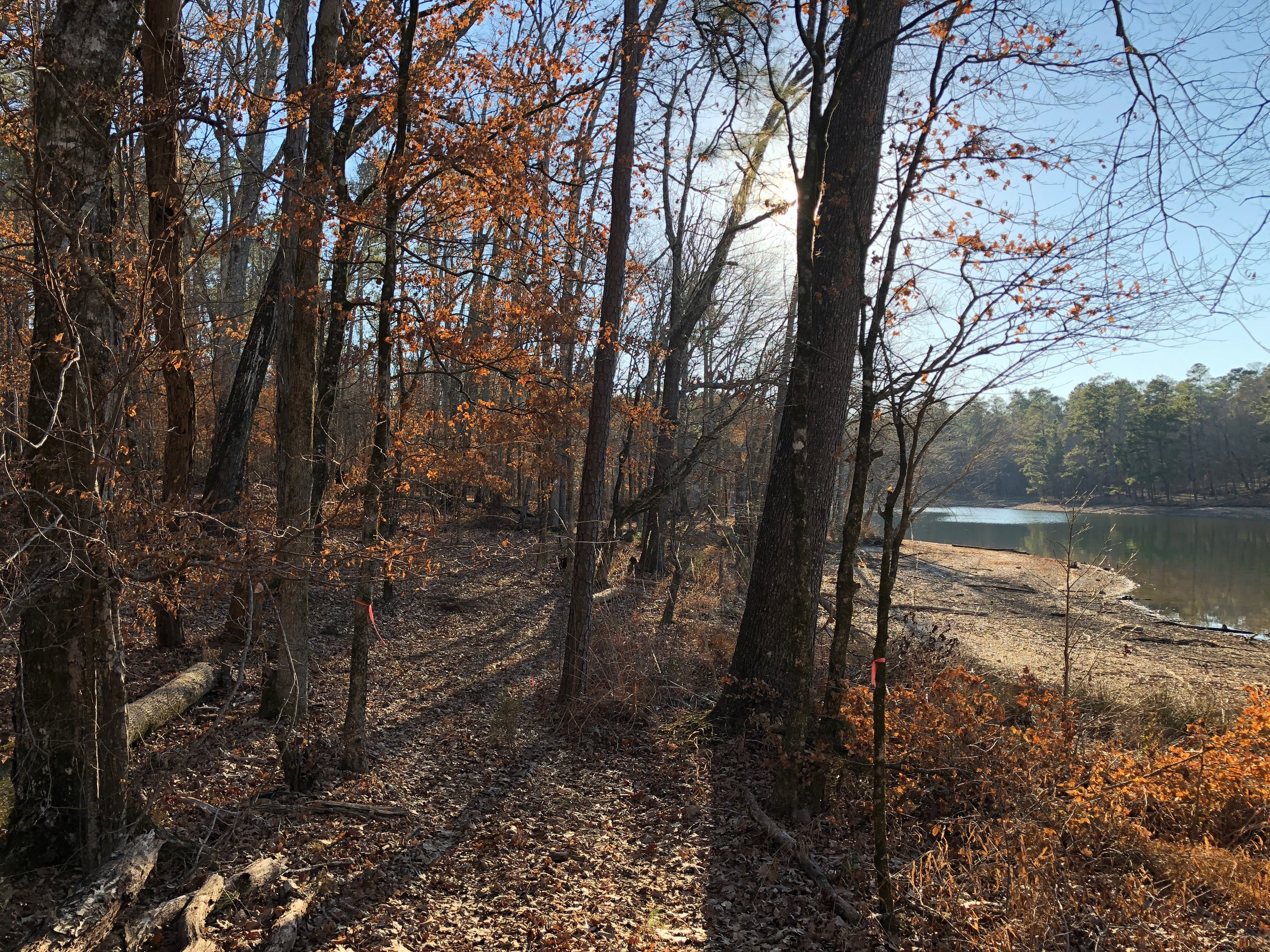 The new 4.5 mile Lake Greenwood Trail system opened in the fall of 2017