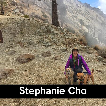 California_Los Angeles_Stephanie Cho.png