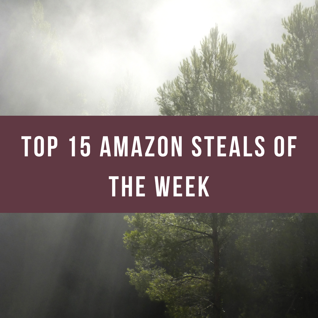TOP 15 AMAZON STEALS.png