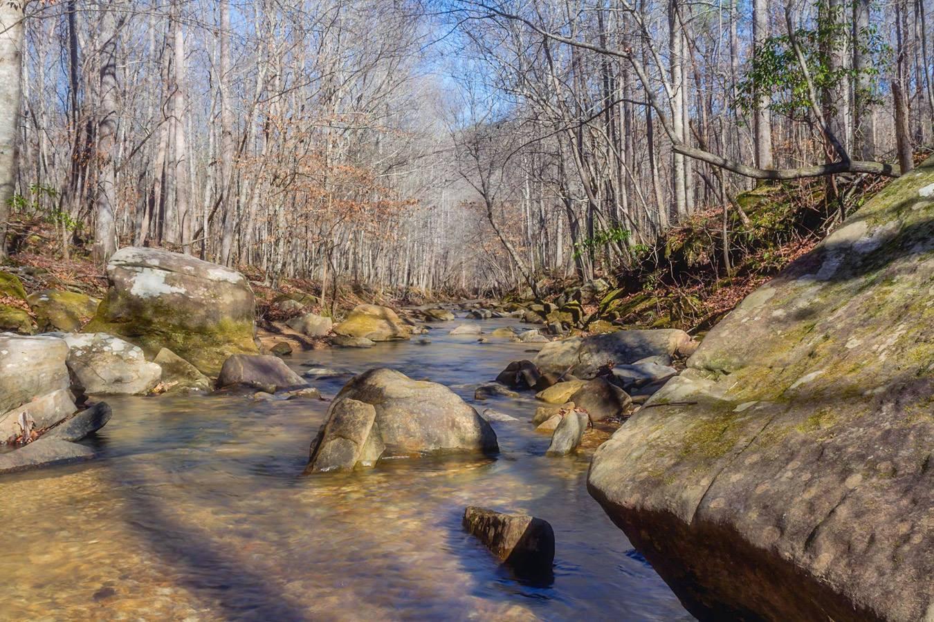 cane-creek.jpg