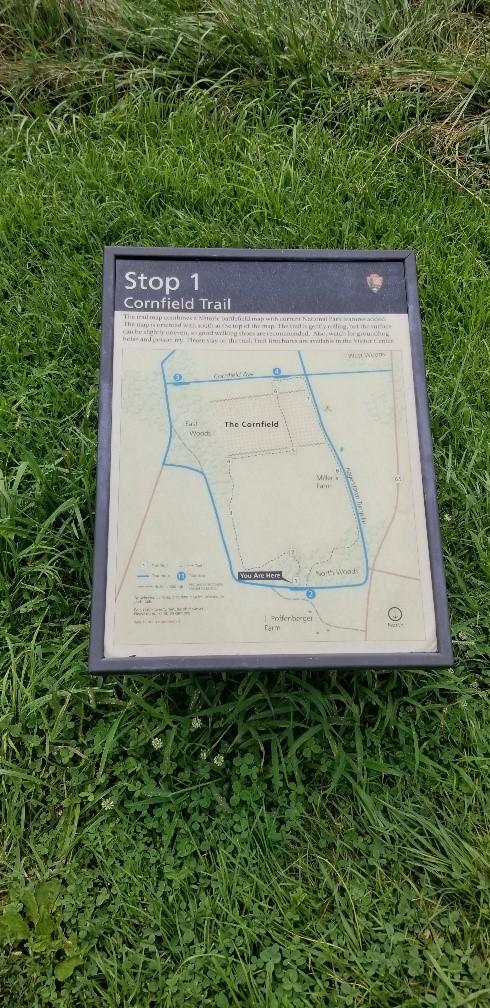 cornfield-trail-2.jpg