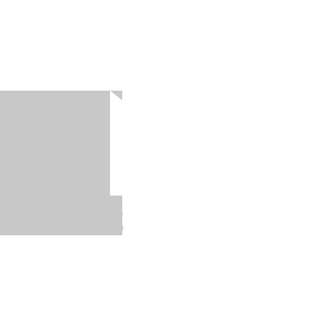 logo-bnn.png