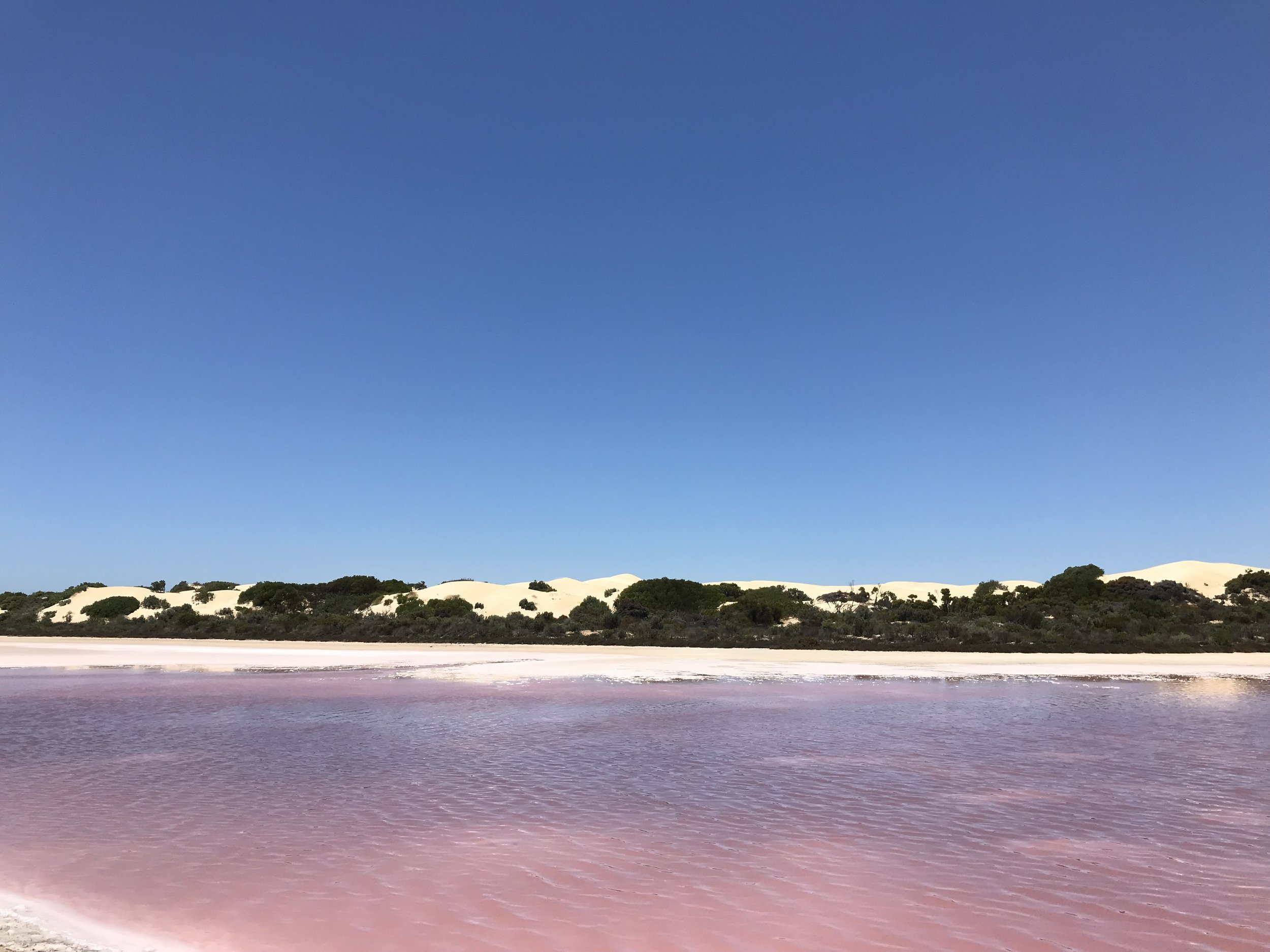 Point Sinclair Pink lakes