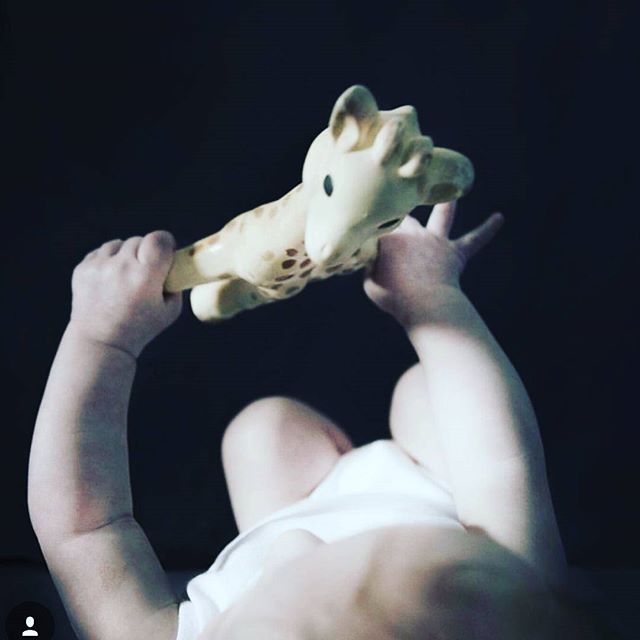 Lets go to bed Sophie. Sweet dreams my loves. 💛  great shot! x @katarinamalmstrombrown  #sophiethegiraffe #sophiethegiraffeaustralia #sophielagirafe #bestteethingtoy #teethingtoy #happybaby #naturalrubber #nontoxicpaint #teethingbaby