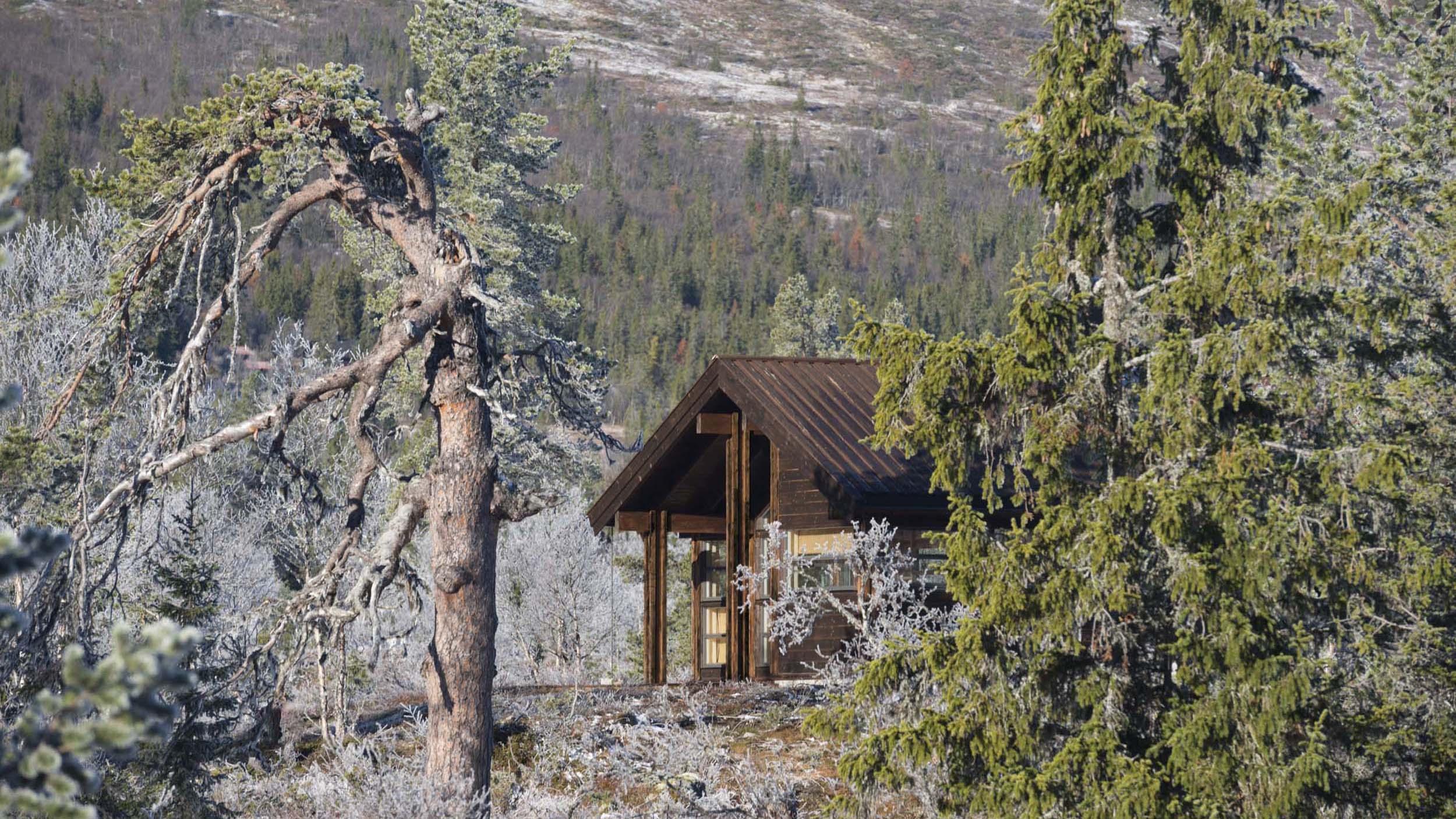 Ålhytta_prøvebu_Reinsjøfjell_SVA0021.jpg
