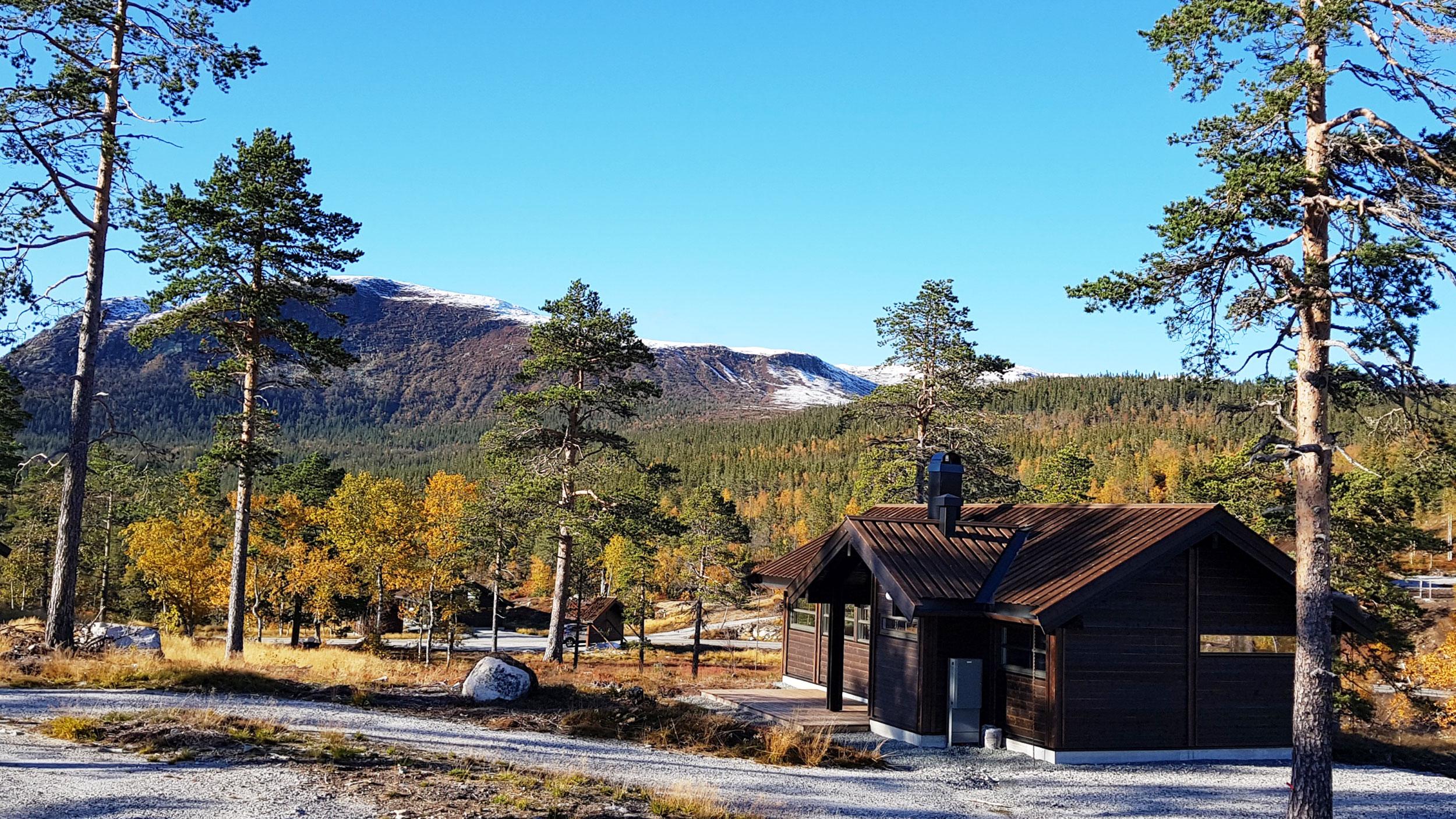 Tomt_44-mot-Sørbølfjell.jpg