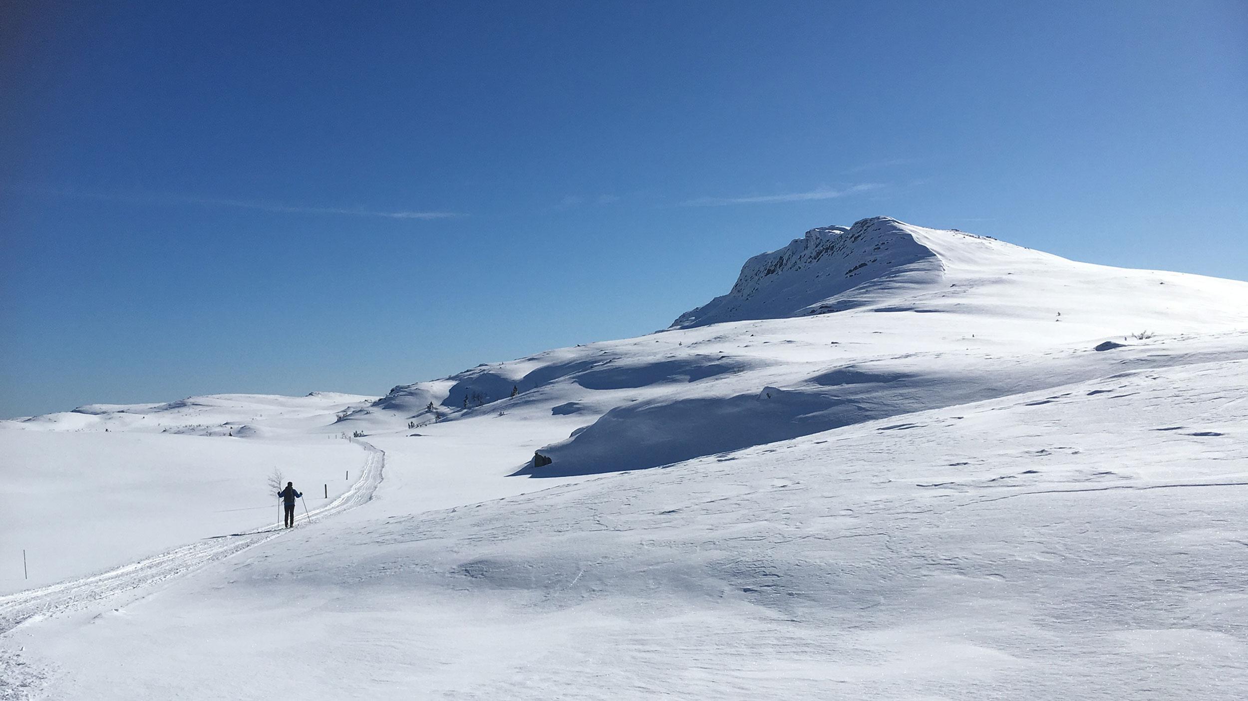 Skitur langs Ranten.