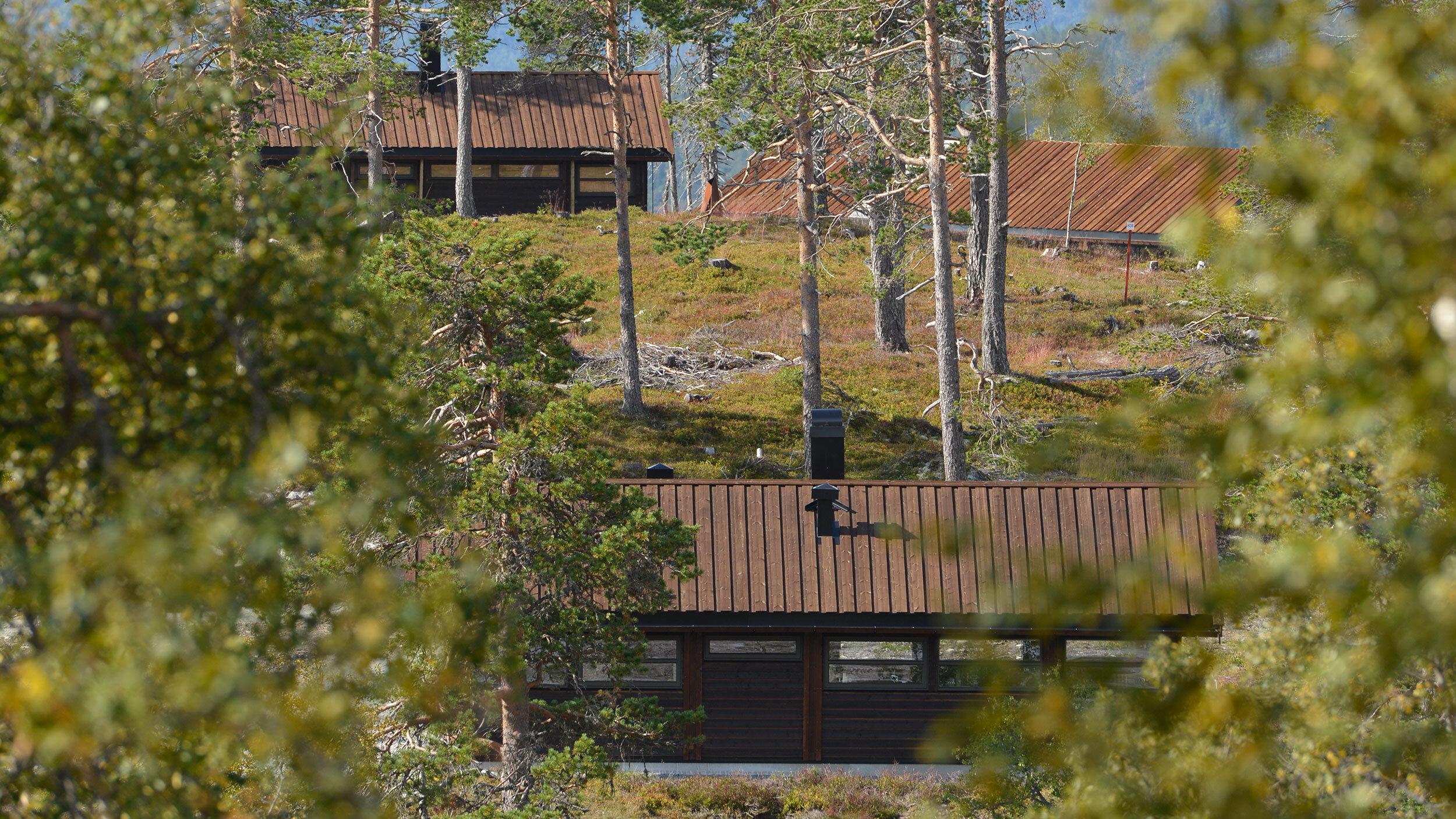 Ålhytte_Sørbølfjell_SVA2149.jpg