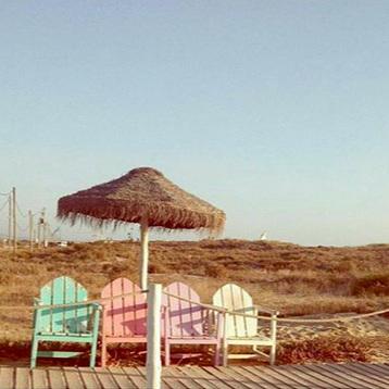 UN GRAND CLASSIQUE : BORDA D'AGUA      OPEN     Praia da Morena s/n, Costa da Caparica / 21 297 5213