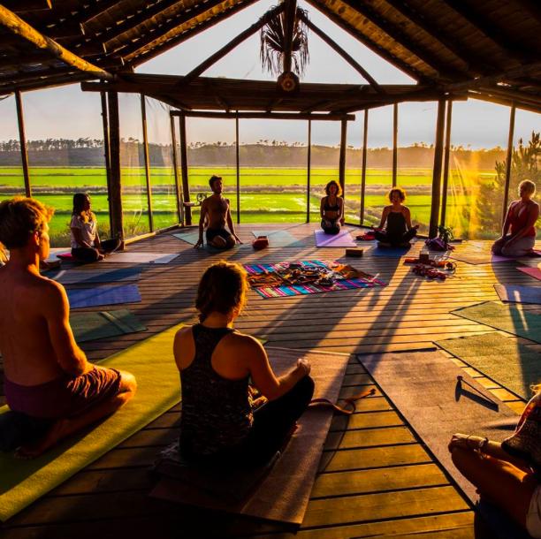 YOGA DANS LES RIZIÈRES     Commencer sa journée avec une salutation au soleil au coeur des rizières.    Comece a sua jornada com um cumprimento ao sol dos arrozais.    Torre / 913 257 610