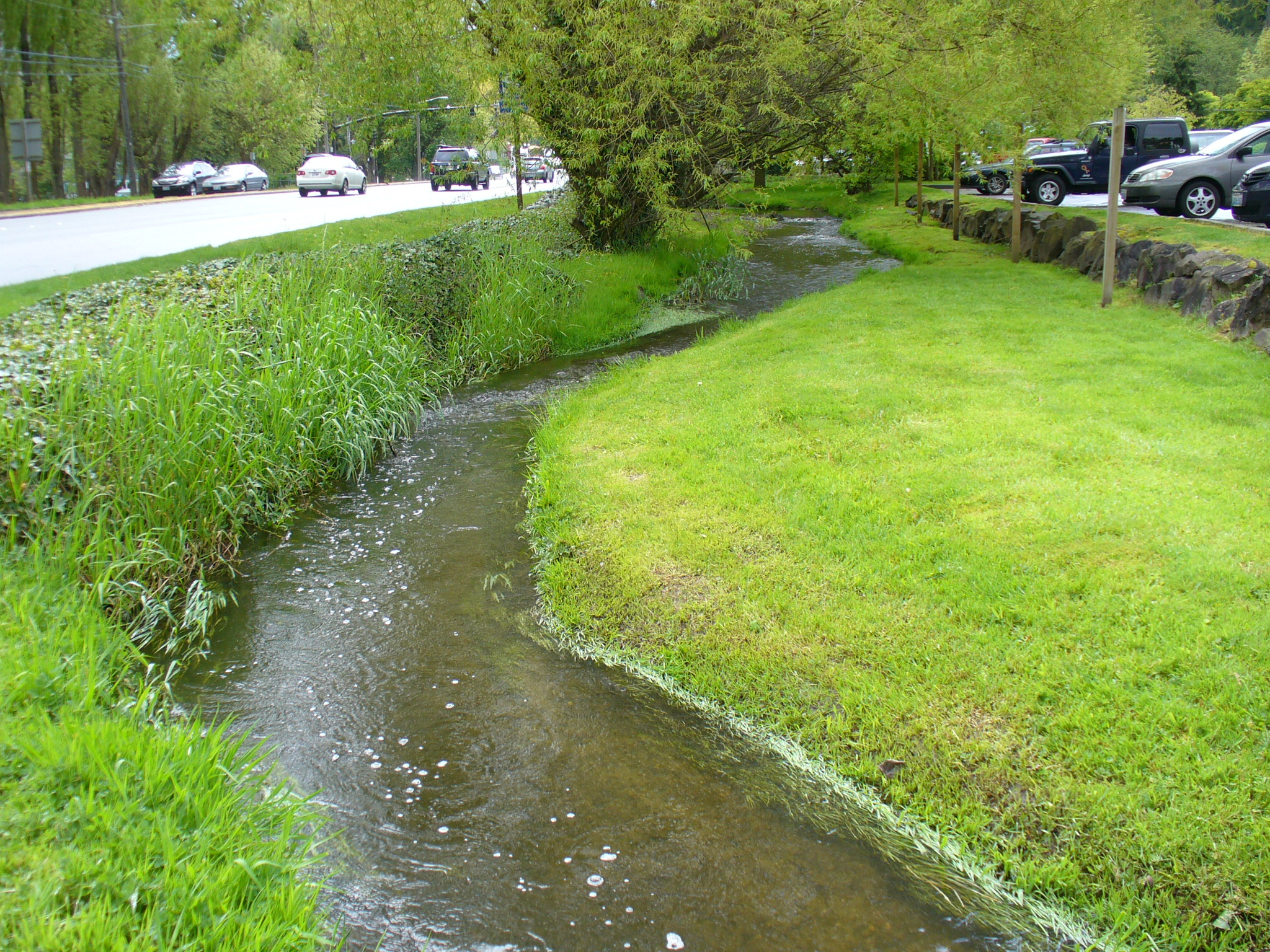Lyon Creek, Before