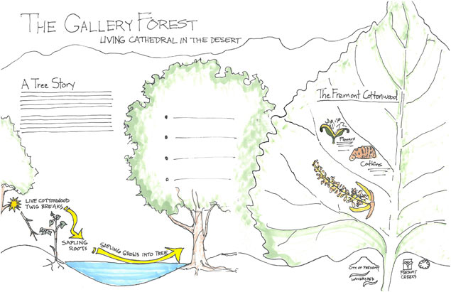 30% mockup for The Gallery Forest interpretive sign.