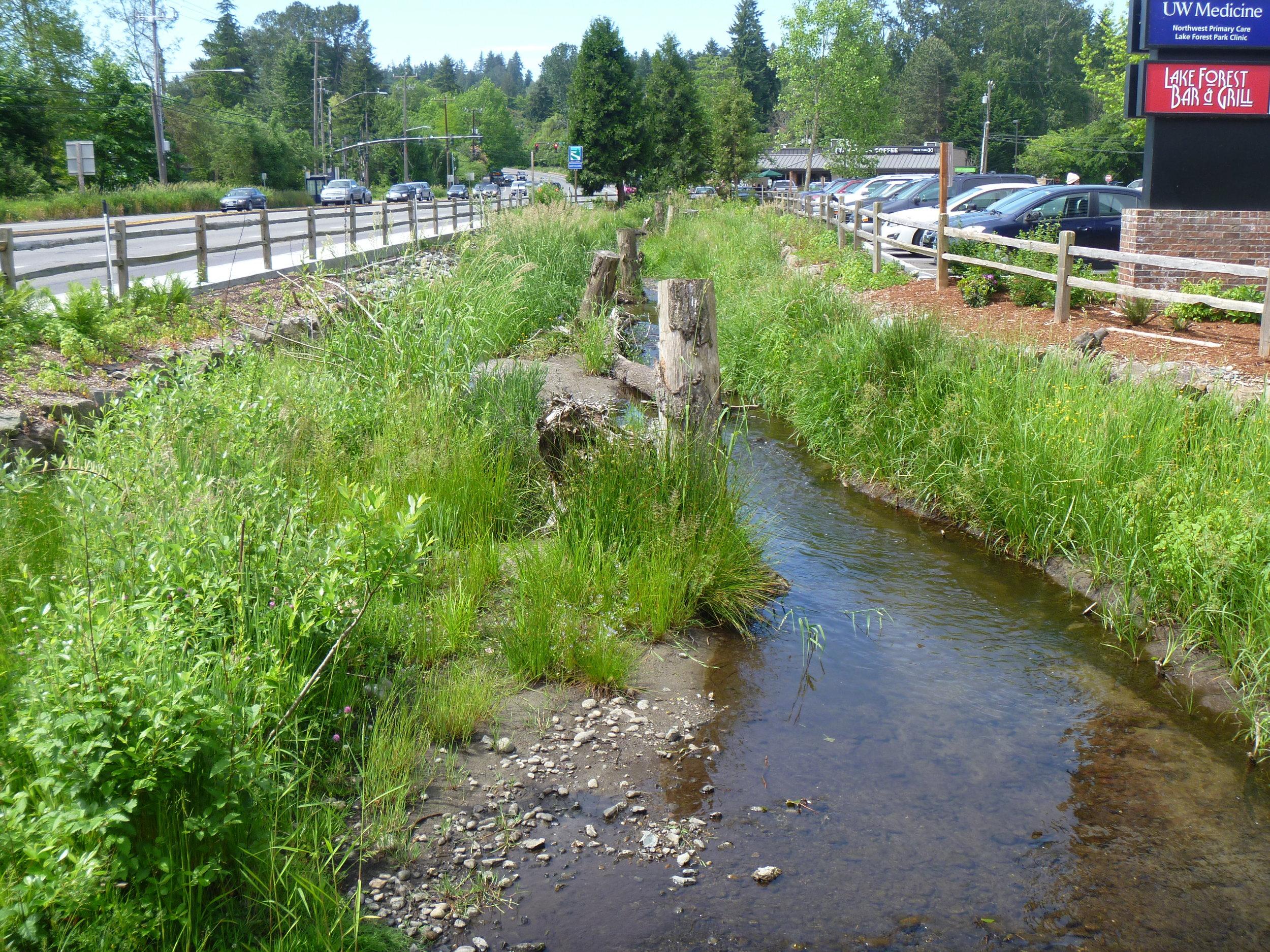 Lyon Creek, After