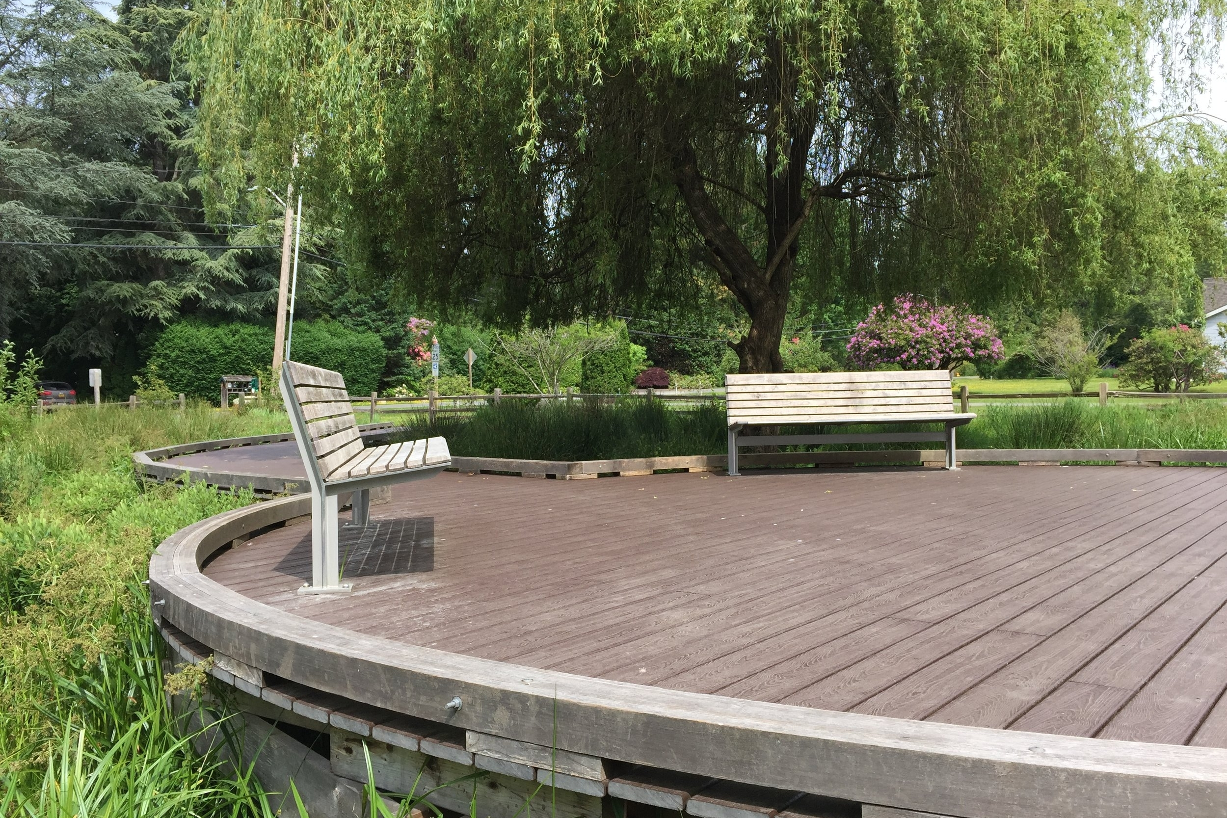 The Watershed Company provided landscape design, wetland delineation, mitigation, and environmental permitting to Lake Forest Park in the development of Whispering Willow Park.