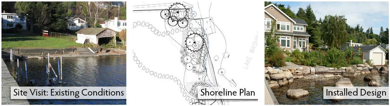 Shoreline design process by The Watershed Company