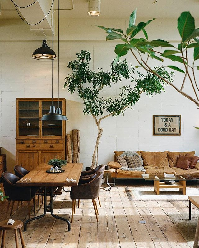 today is a good day. ⠀⠀ ⠀⠀ ⠀⠀ ⠀⠀ ⠀⠀ ⠀⠀ ⠀⠀ ⠀⠀ ⠀⠀ ⠀⠀ ⠀⠀ ⠀⠀ ⠀⠀ ⠀⠀ #onlyifigettostayinthisroom #100 #lettheoutsidein #furniture #vintage #architecture #interiors #interiordesign #howwedwell #mydomain #elledecoration #indoortrees #naturalspaces #livedin #getcomfortable #stuffilove #designinspo #designinspiration #truckfurniture #osaka #japan