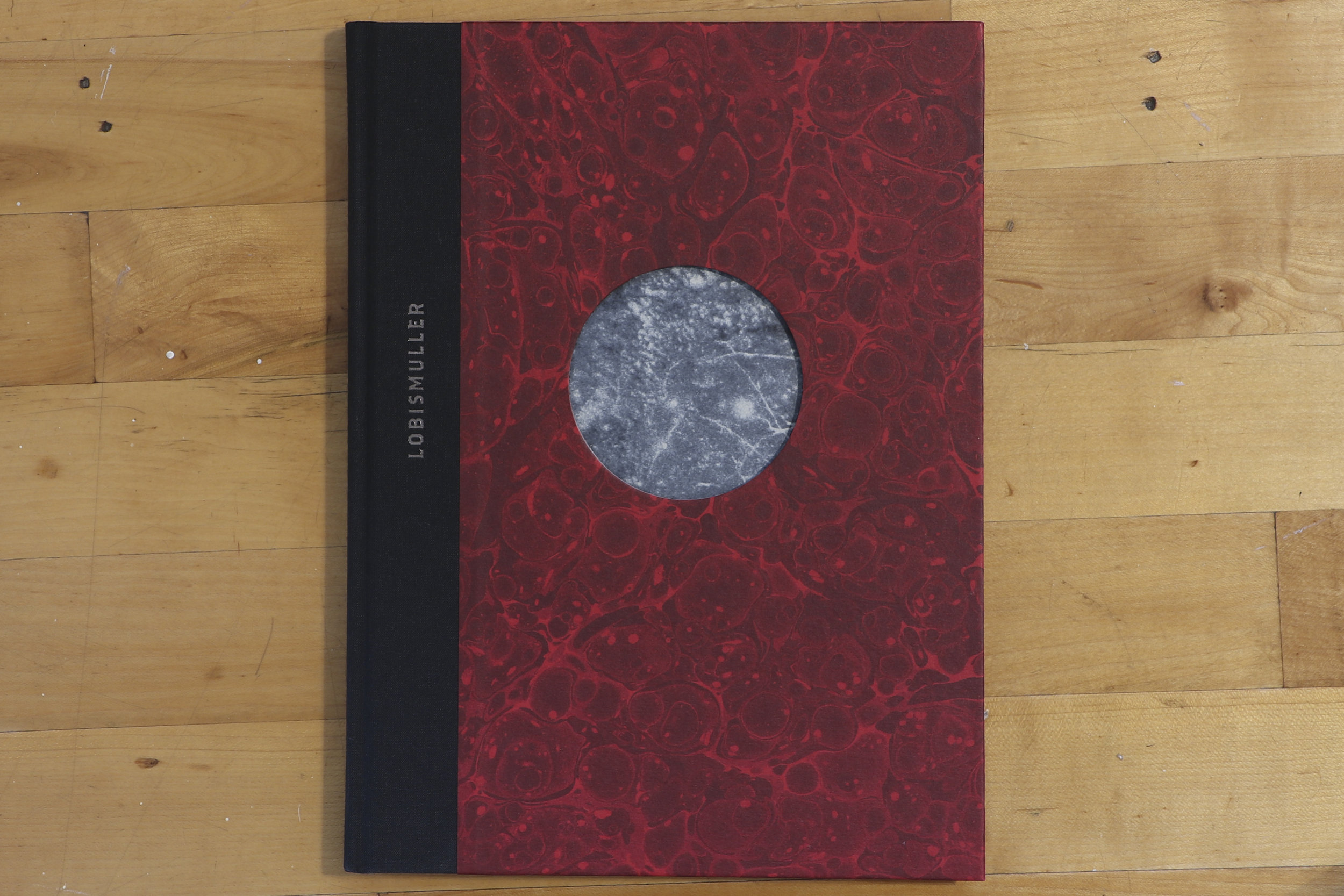 lobis front cover.jpg