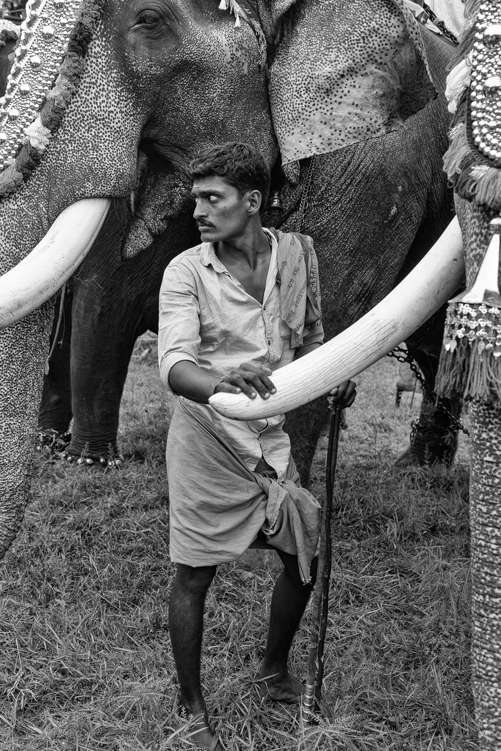 elephant minder, karnataka