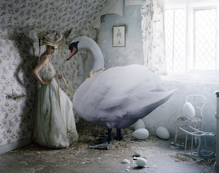 tim_walker_photography_white_swan.jpg