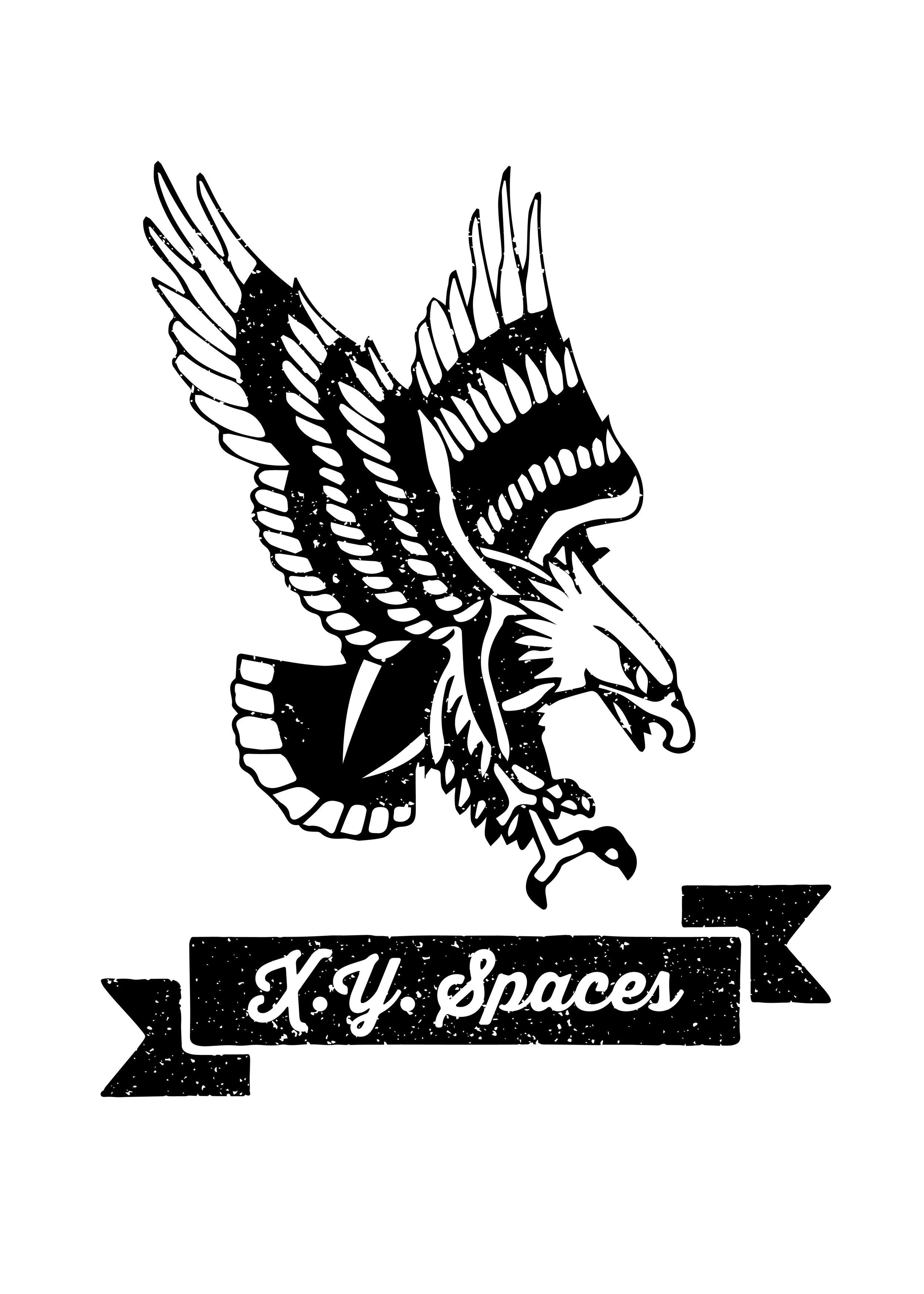XYSpaceseagleshirt-02.jpg