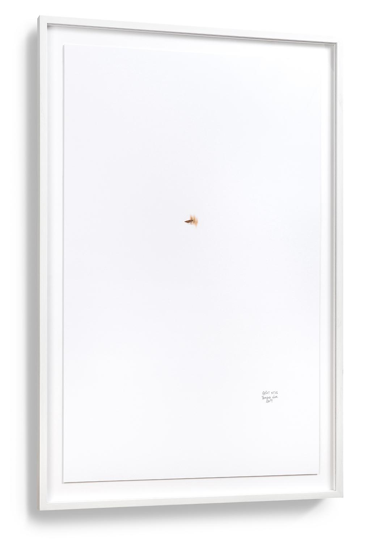 Goût n°16, framed/encadré