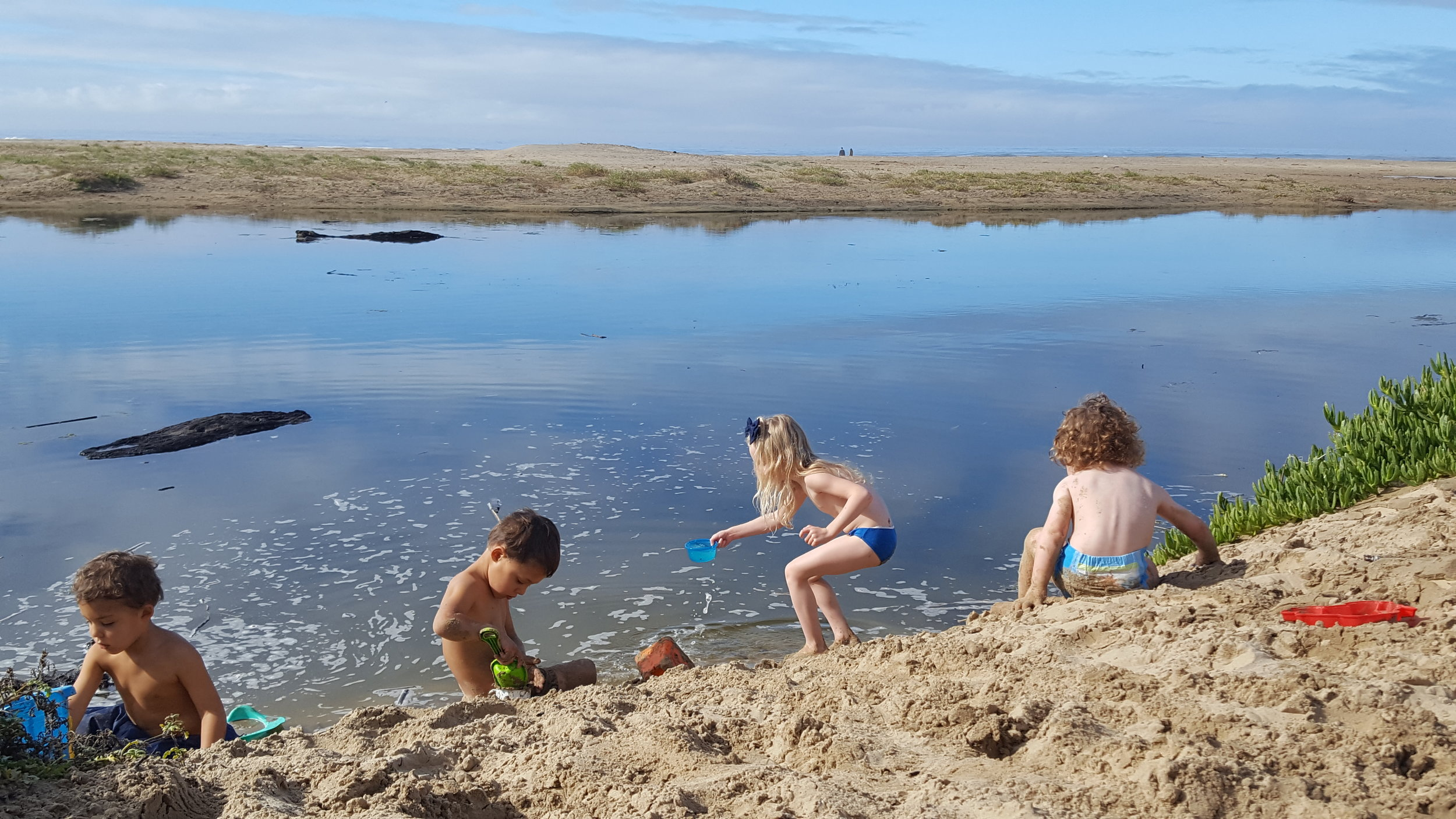 Digging, scooping, tossing, and swimming in sand and water!