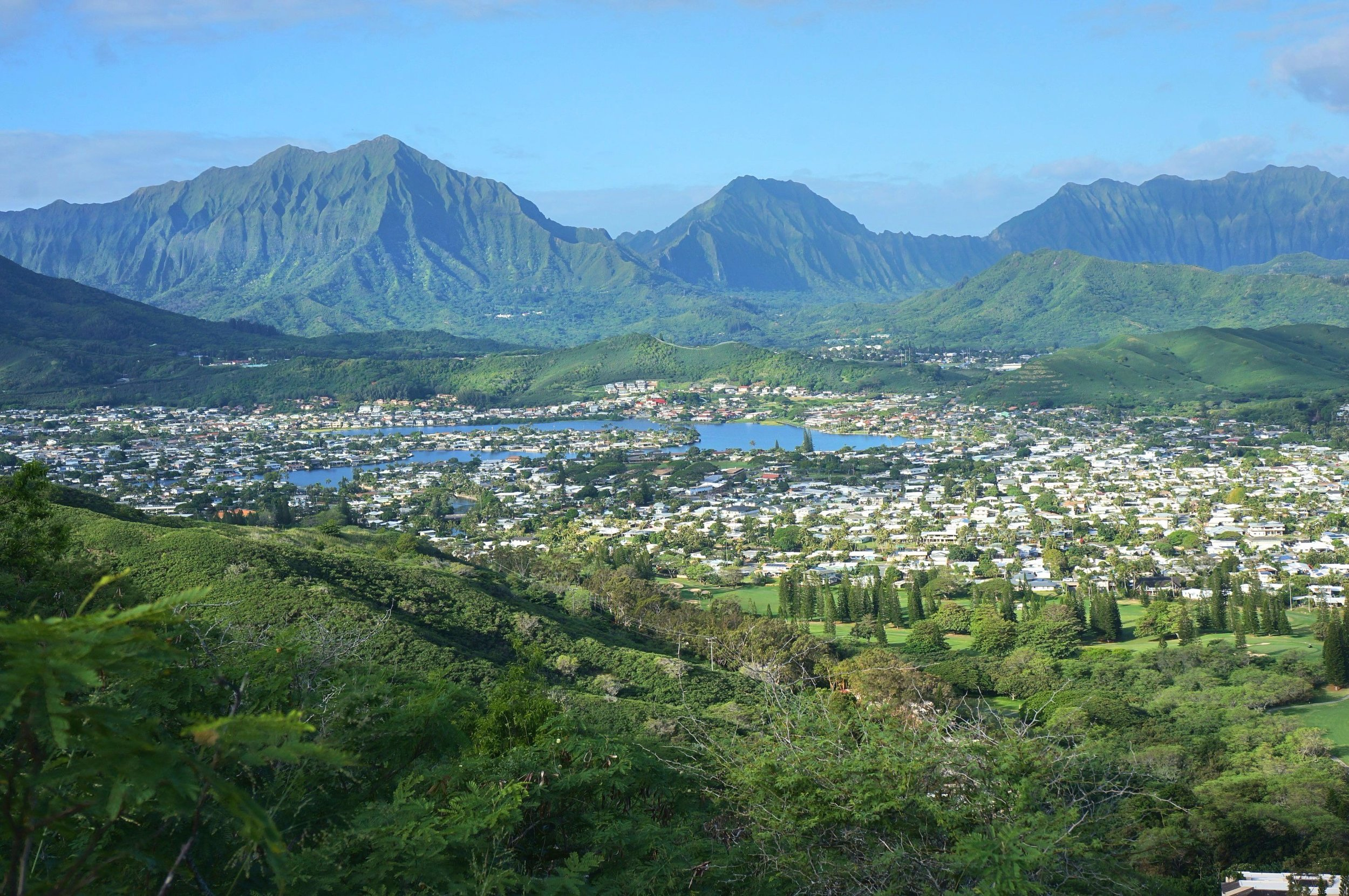 Not a painting, nor is it fake. This is our backdrop in Oahu!