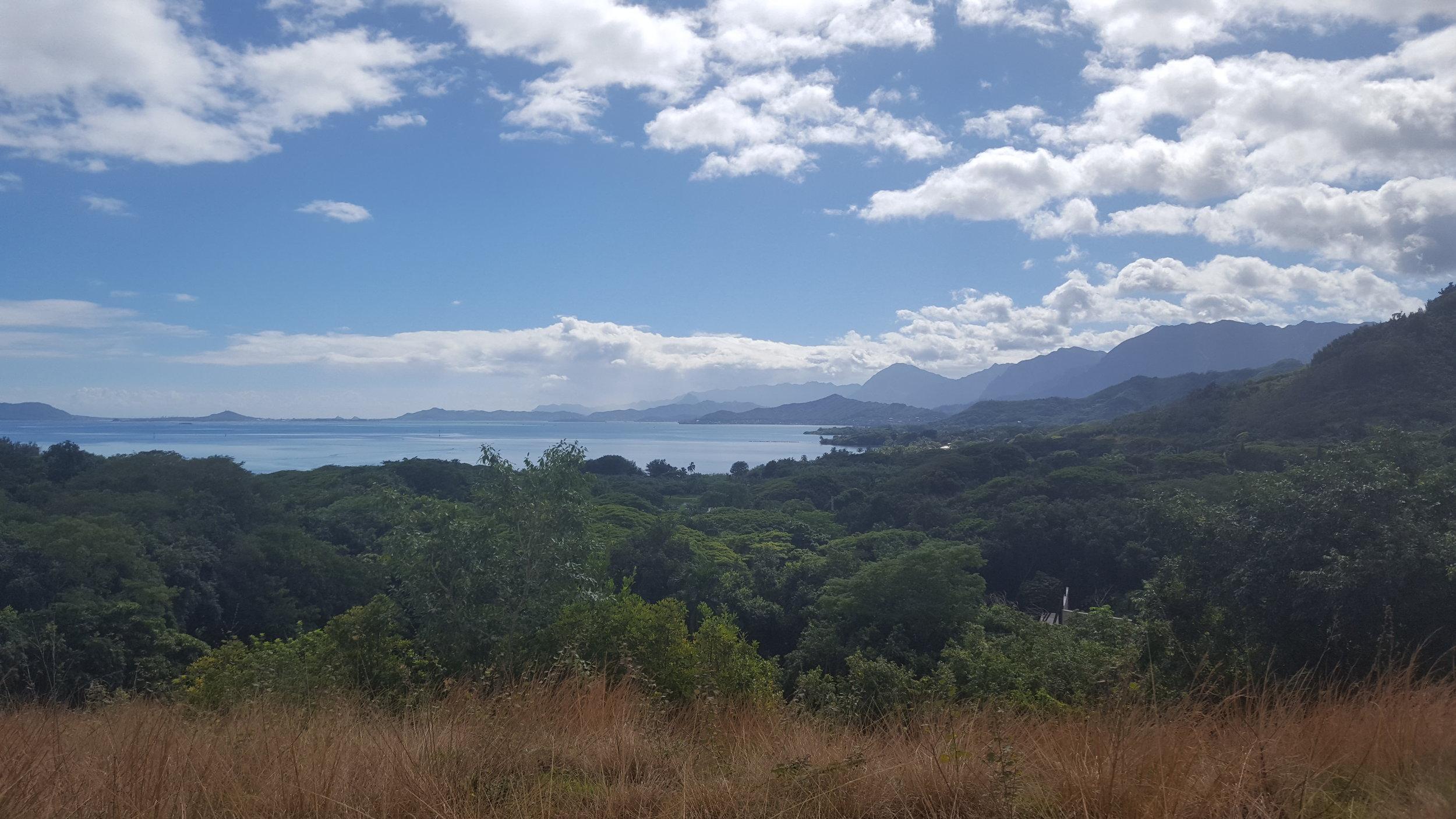 Ahh, the views...