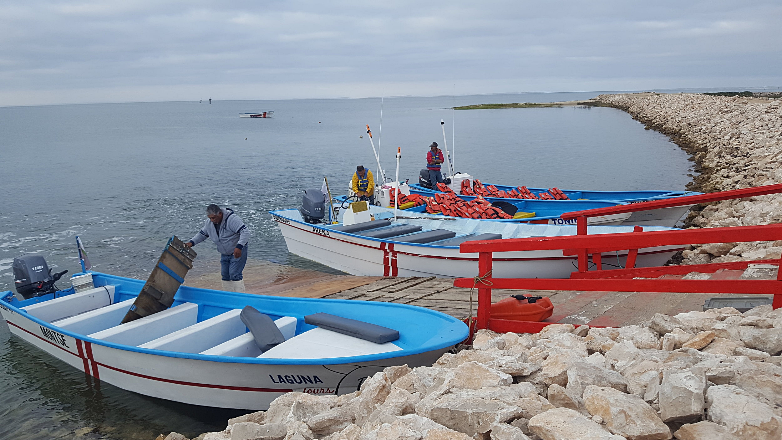 The boats are ready to go!