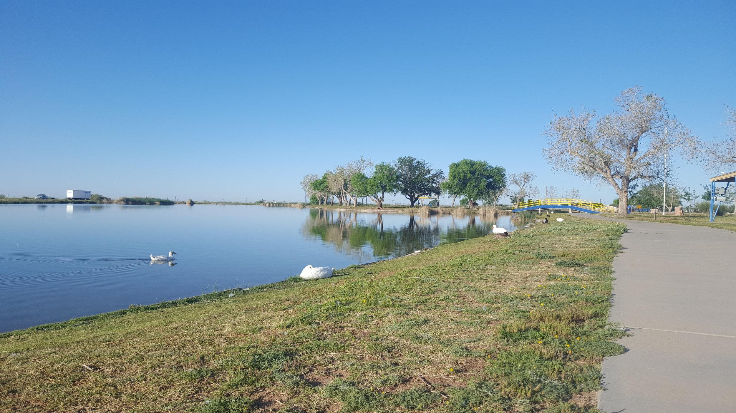 Jal Lake Park Views, Jal, NM.