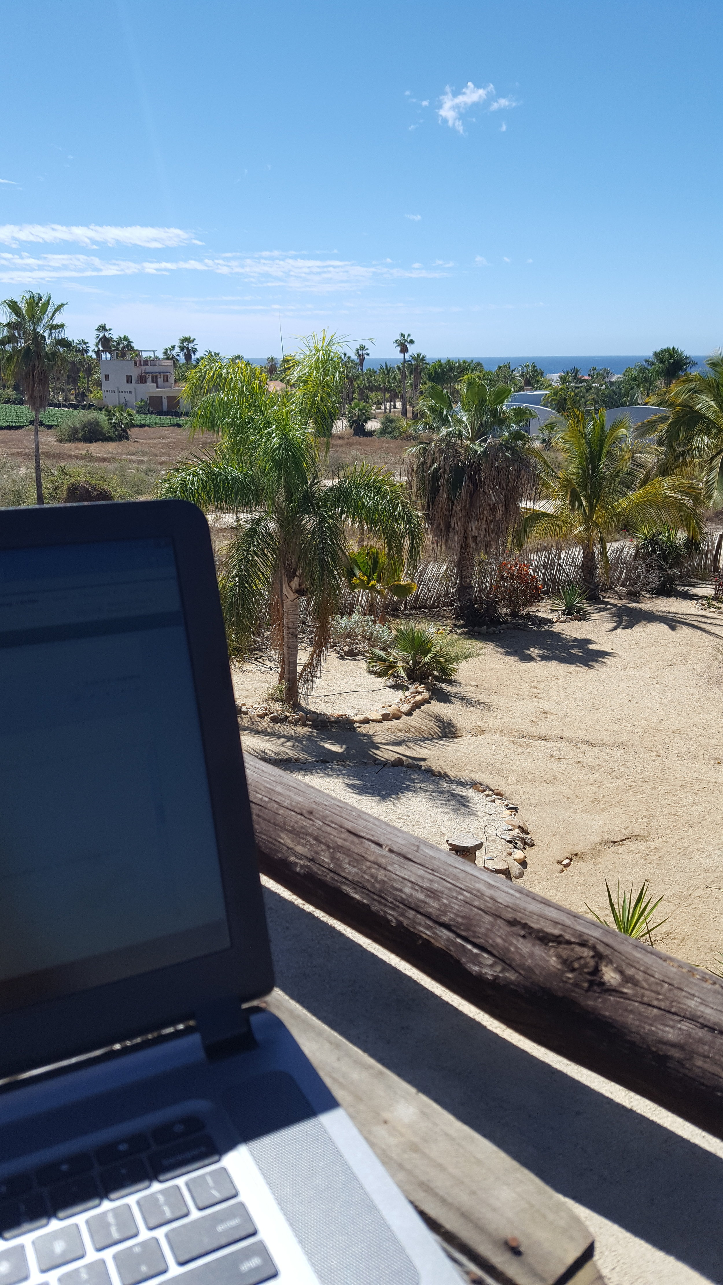 Work with a view!