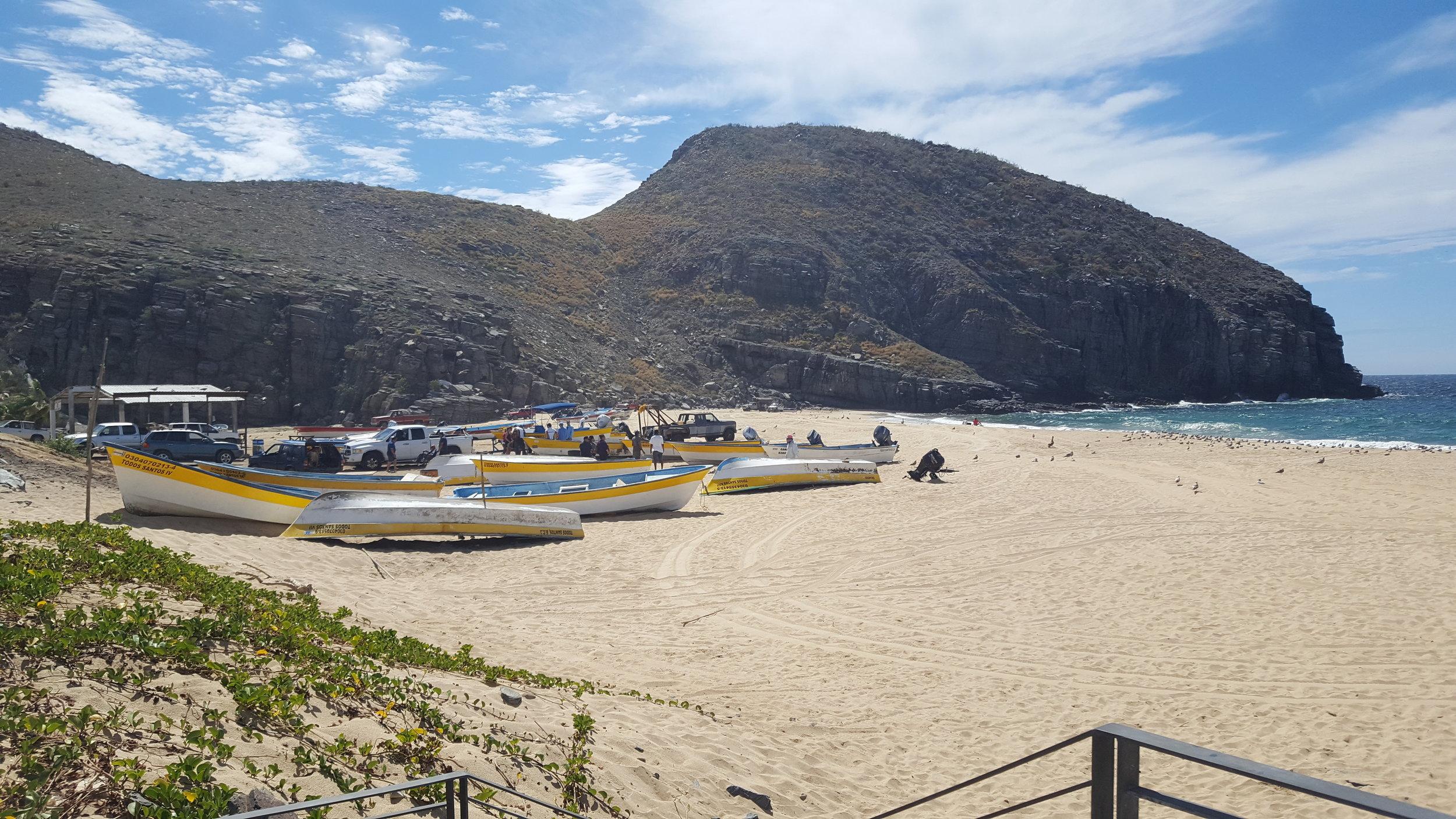 Punta Lobos, Baja California Sur
