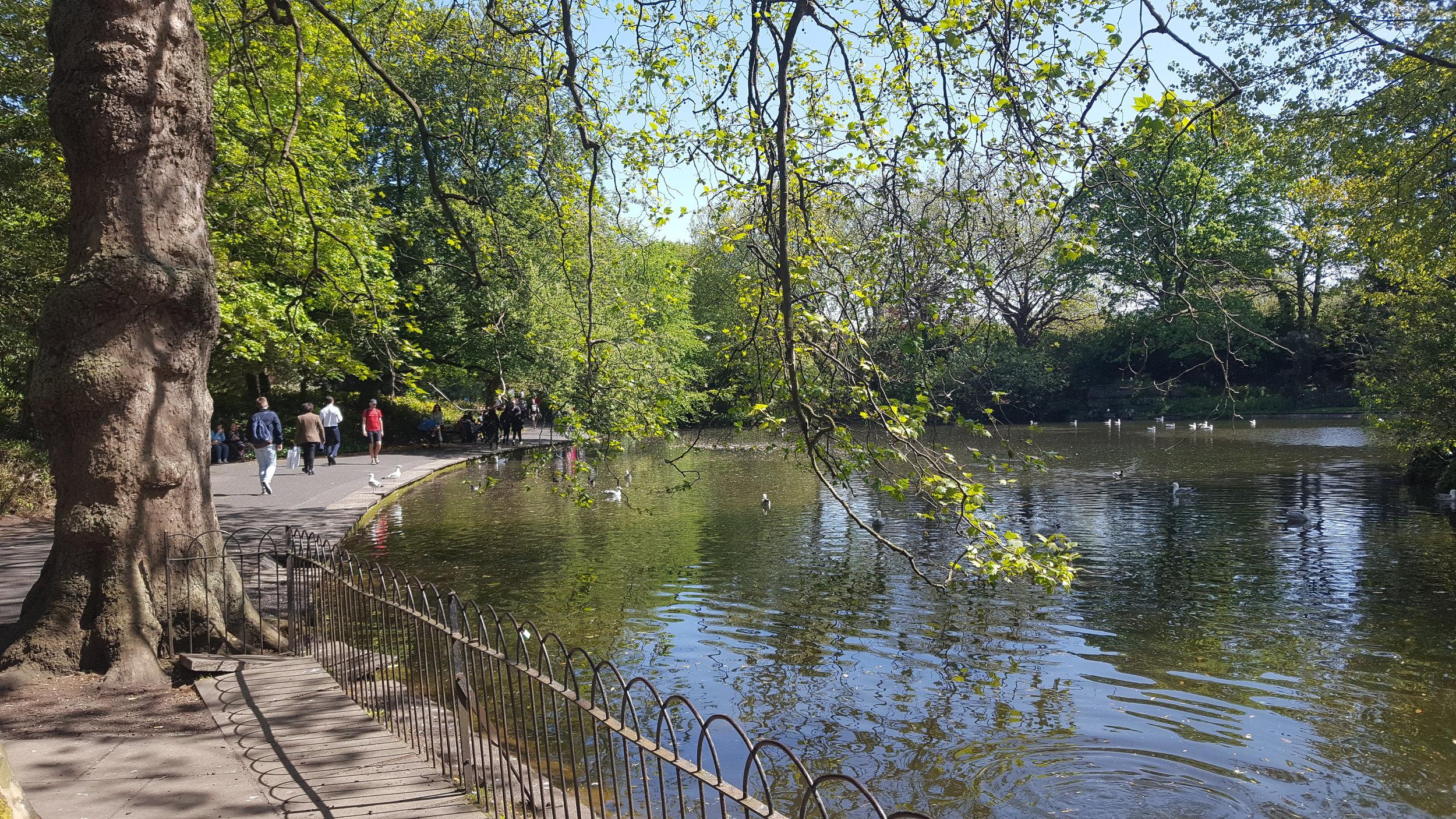The serene setting of St Stephen's Green, Dublin, Ireland