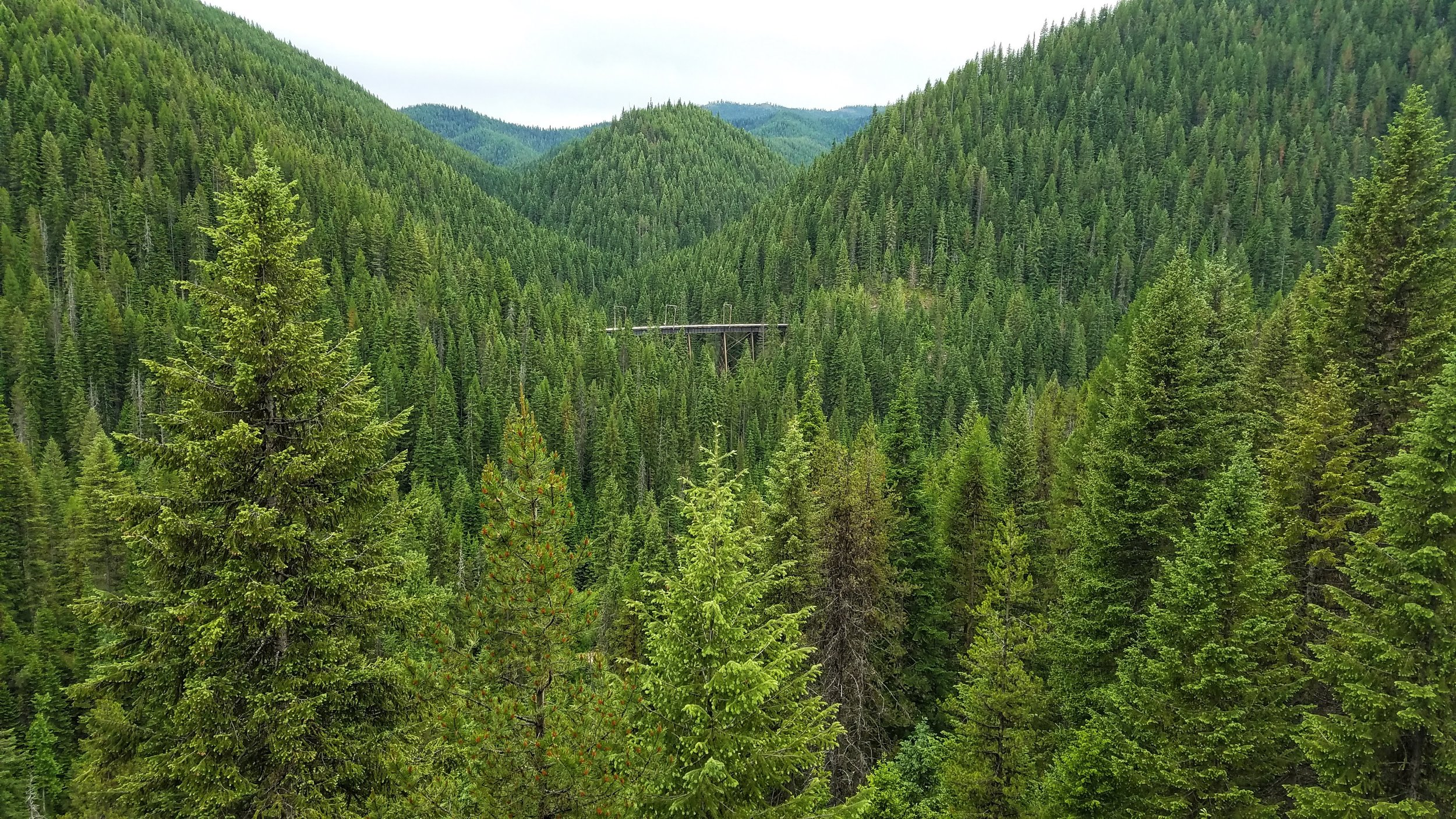 A view from our trestle to the next