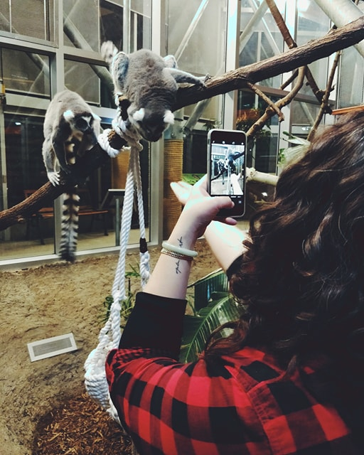 Justine Taking a Picture of Lemurs.jpg